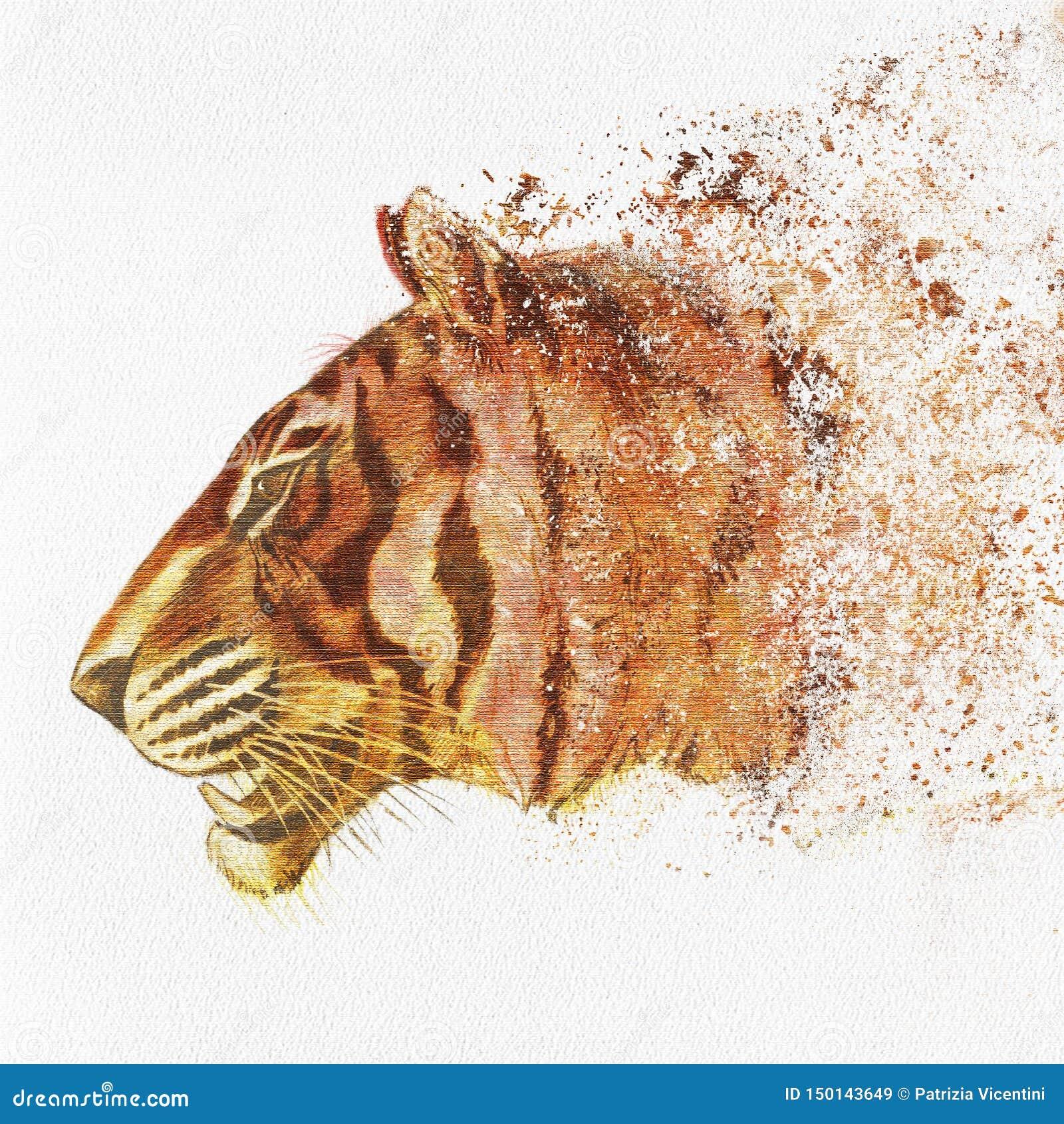 Tiger Head pintado à mão no papel