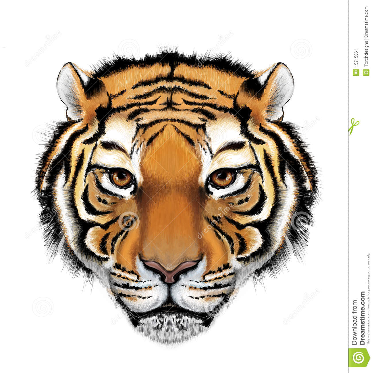 tuger tiger