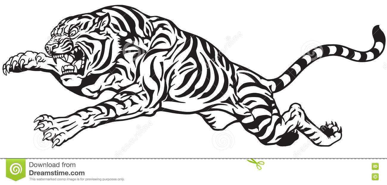 48f043ae5 Tiger jump black and white stock vector. Illustration of strength ...