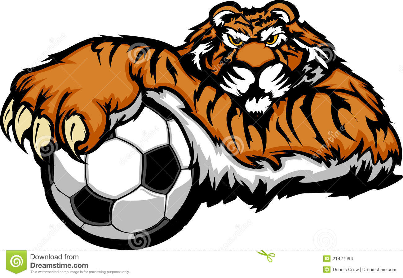 Mascot With Tiger Illustration Soccer Vector  Ball Stock
