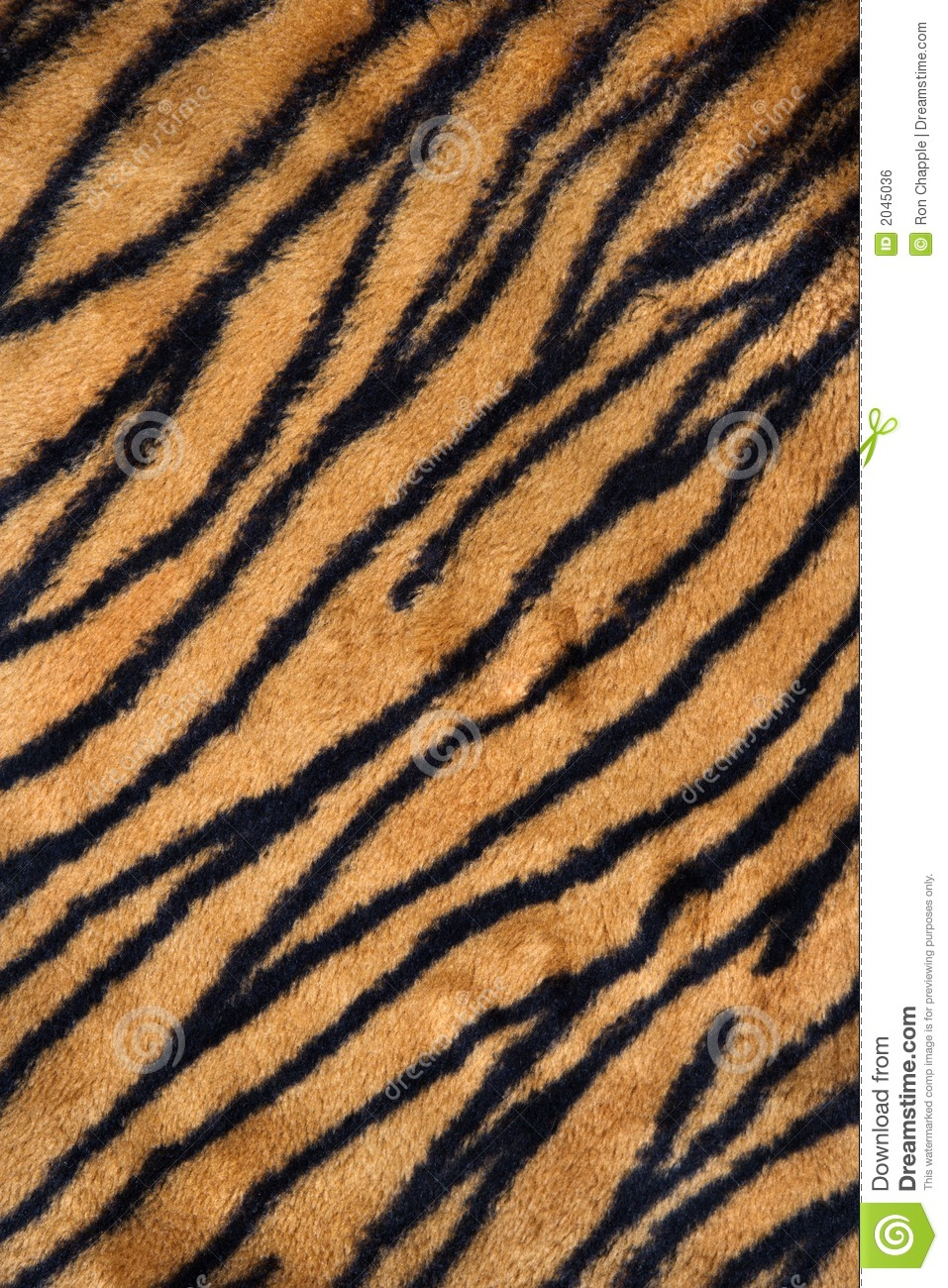 Tiger Print Carpet Stock Photo Image Of Background