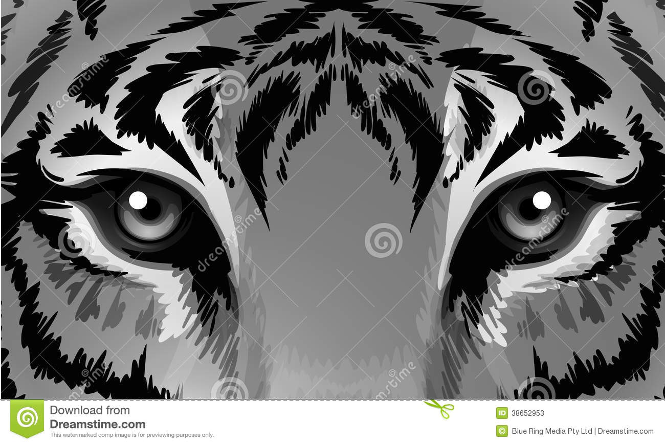 Tiger Eyes Graphic Stock Photos, Images, & Pictures - 749 Images