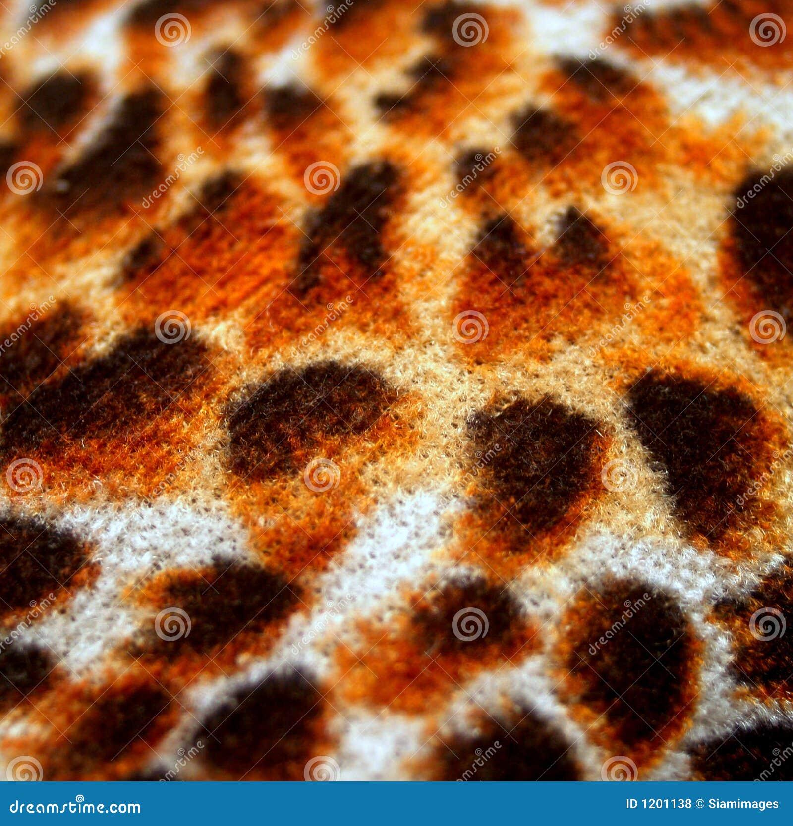 Tiger skin 1