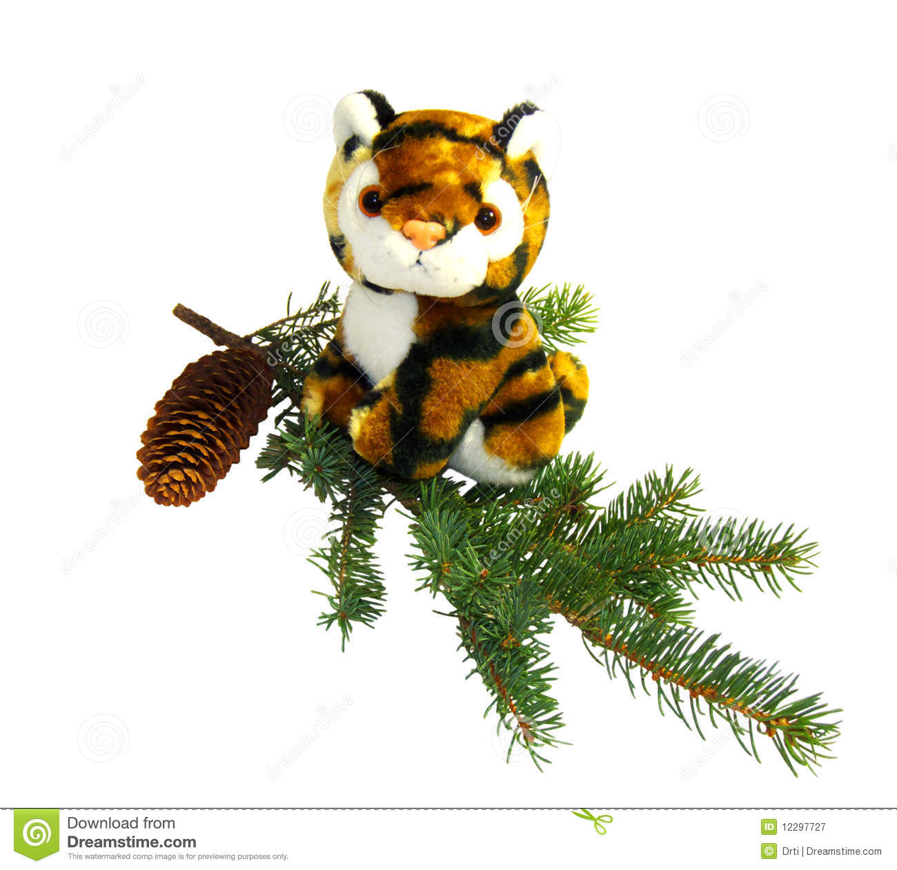 Tiger Symbol Of The New Year 2022 Stock Image Image Of Pine