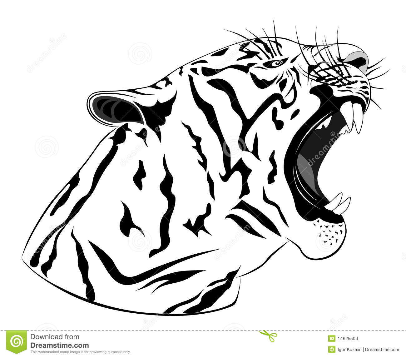 Free vector graphic tiger predator cat big cat free image on - Tiger Tattoo Stock Images Image 14625504