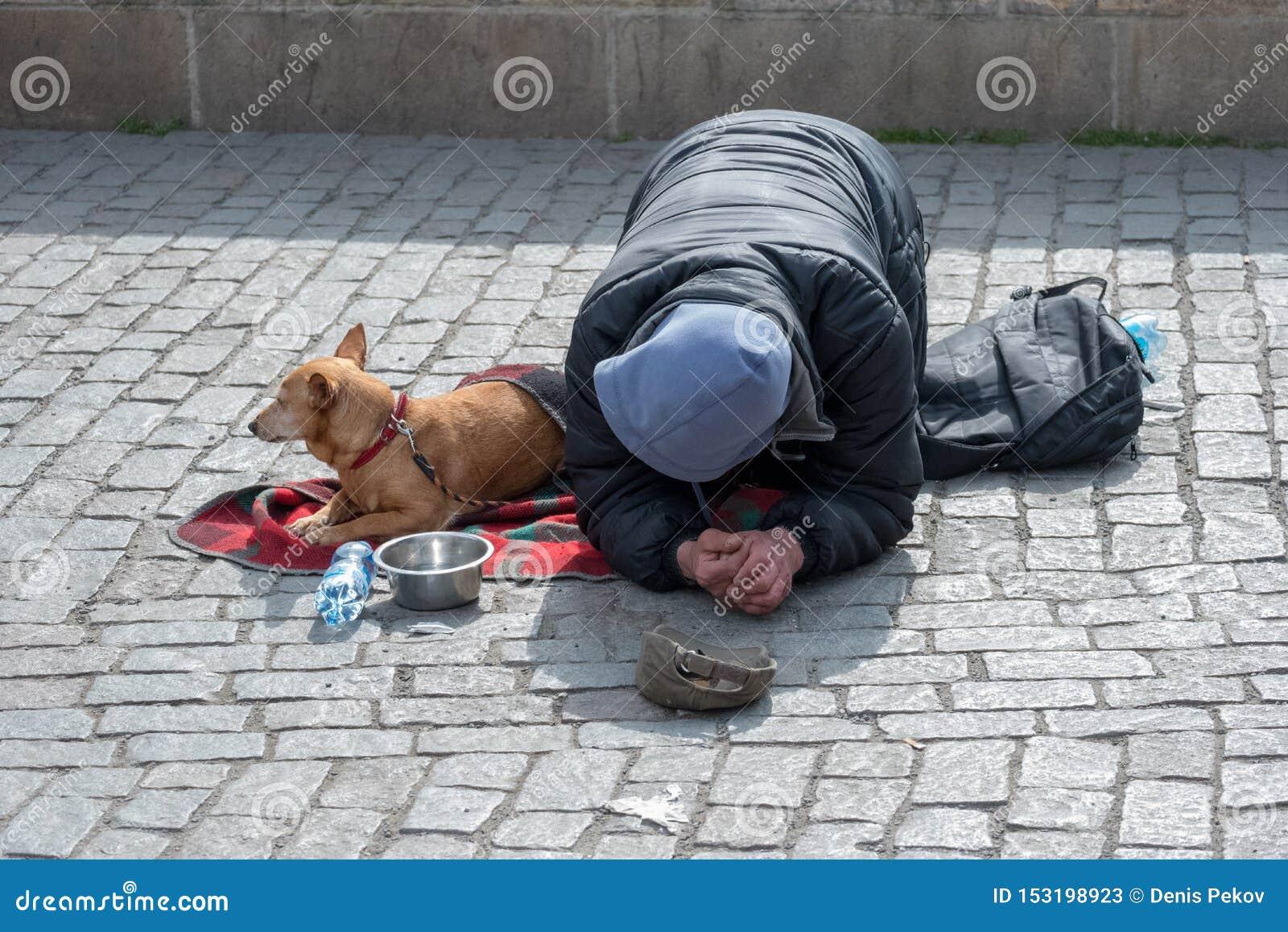 Tiggare hemlös med hunden nära Charles Bridge, Prague, Tjeckien