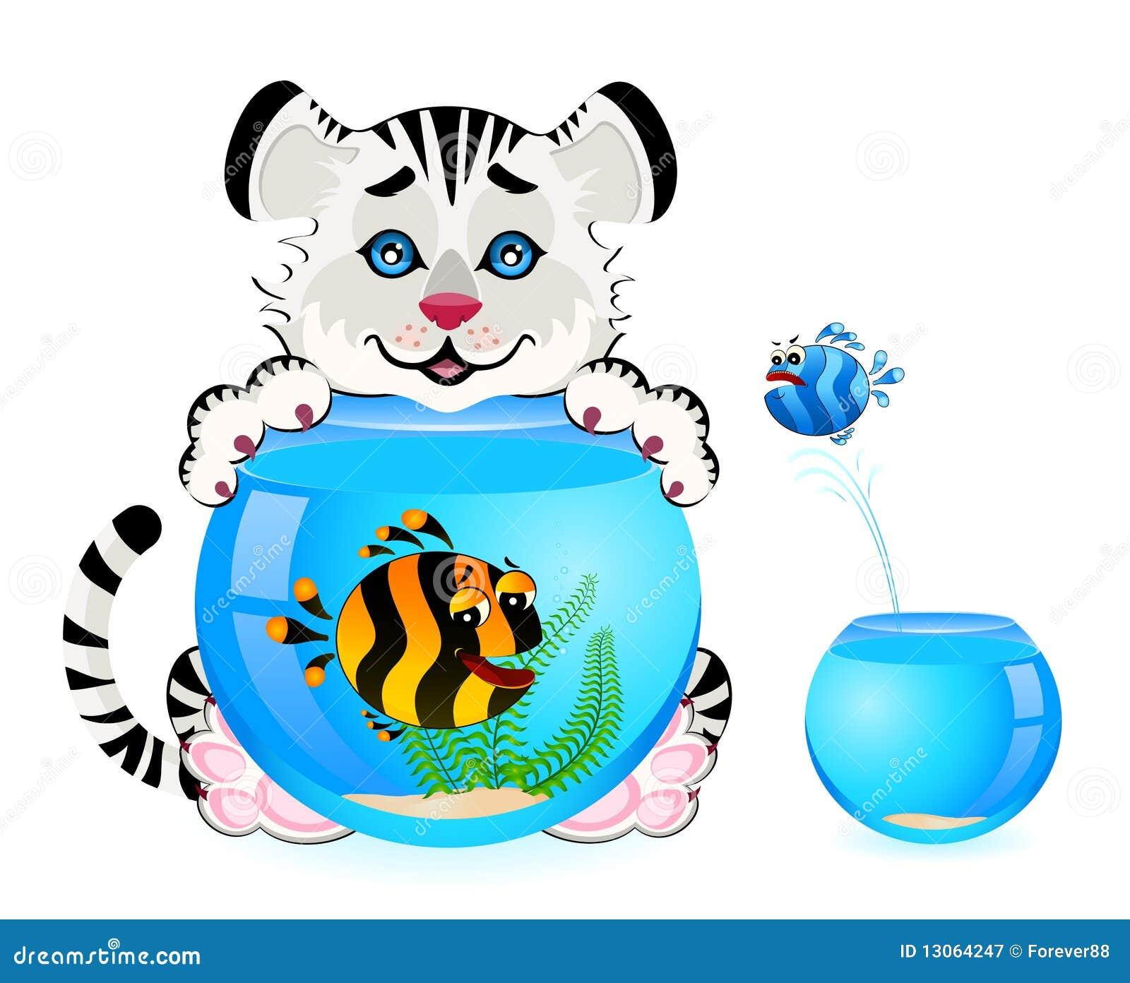 Tigre avec les poissons tropicaux dans l 39 aquarium for Poisson tropicaux pour aquarium