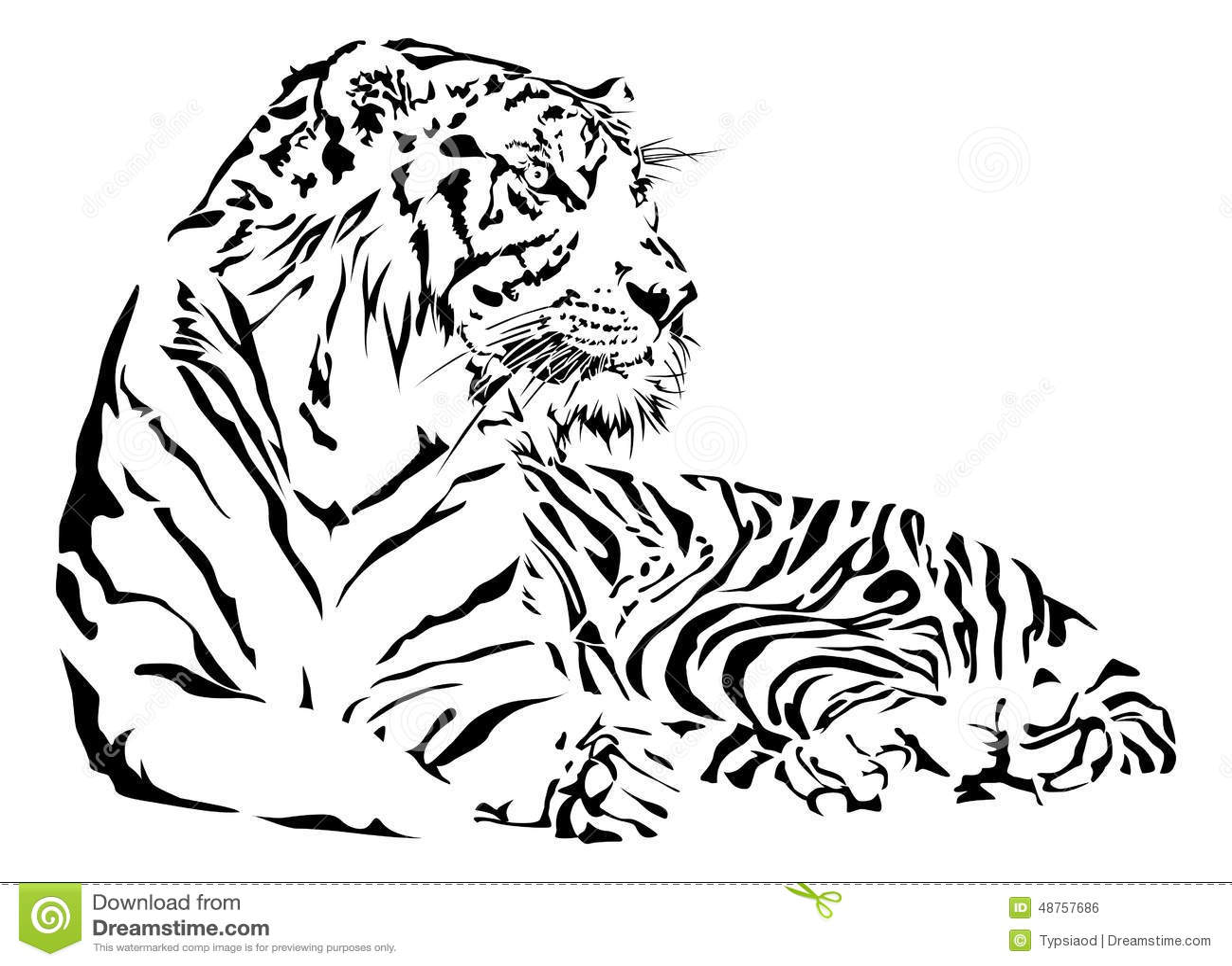 Tigre In Bianco E Nero Illustrazione Vettoriale