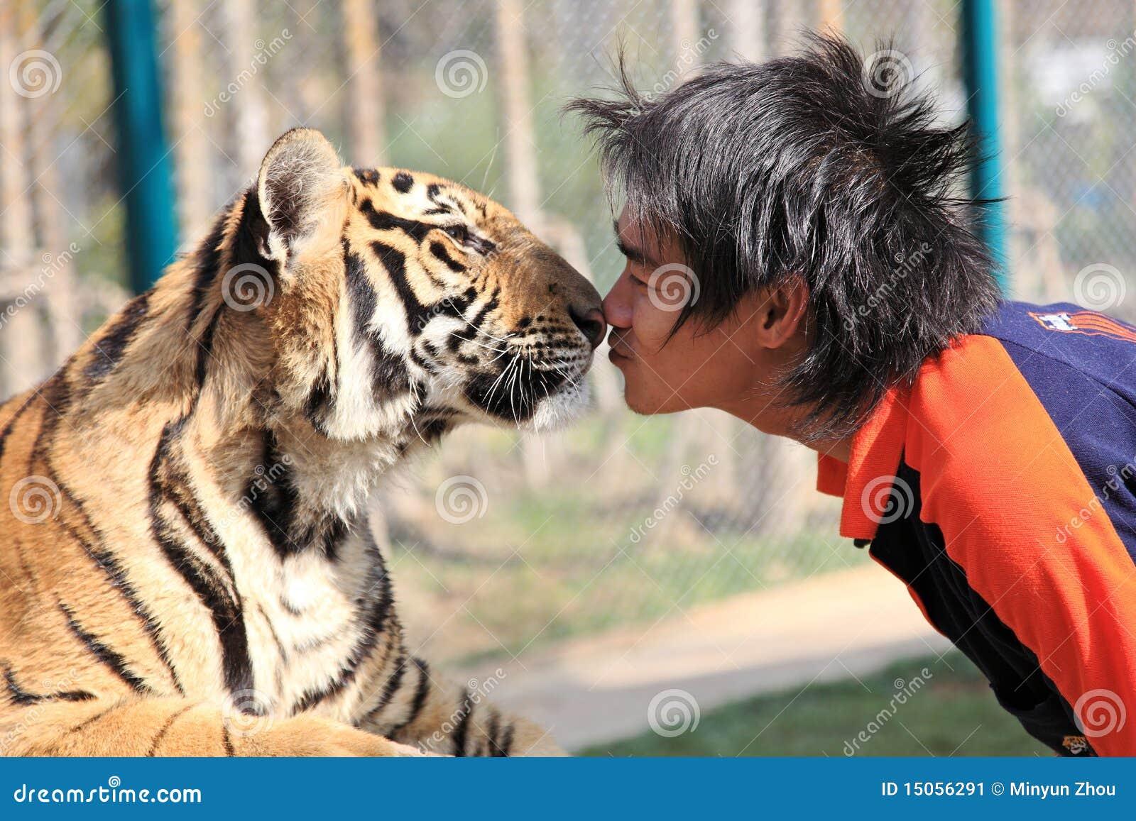 Tigre, Chiang Mai, Tailândia