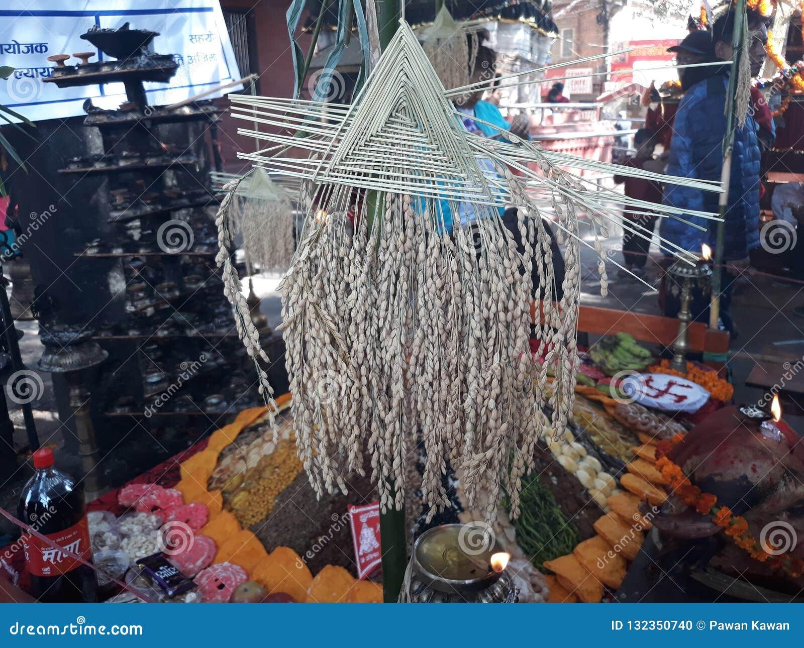 Tihar festiwal