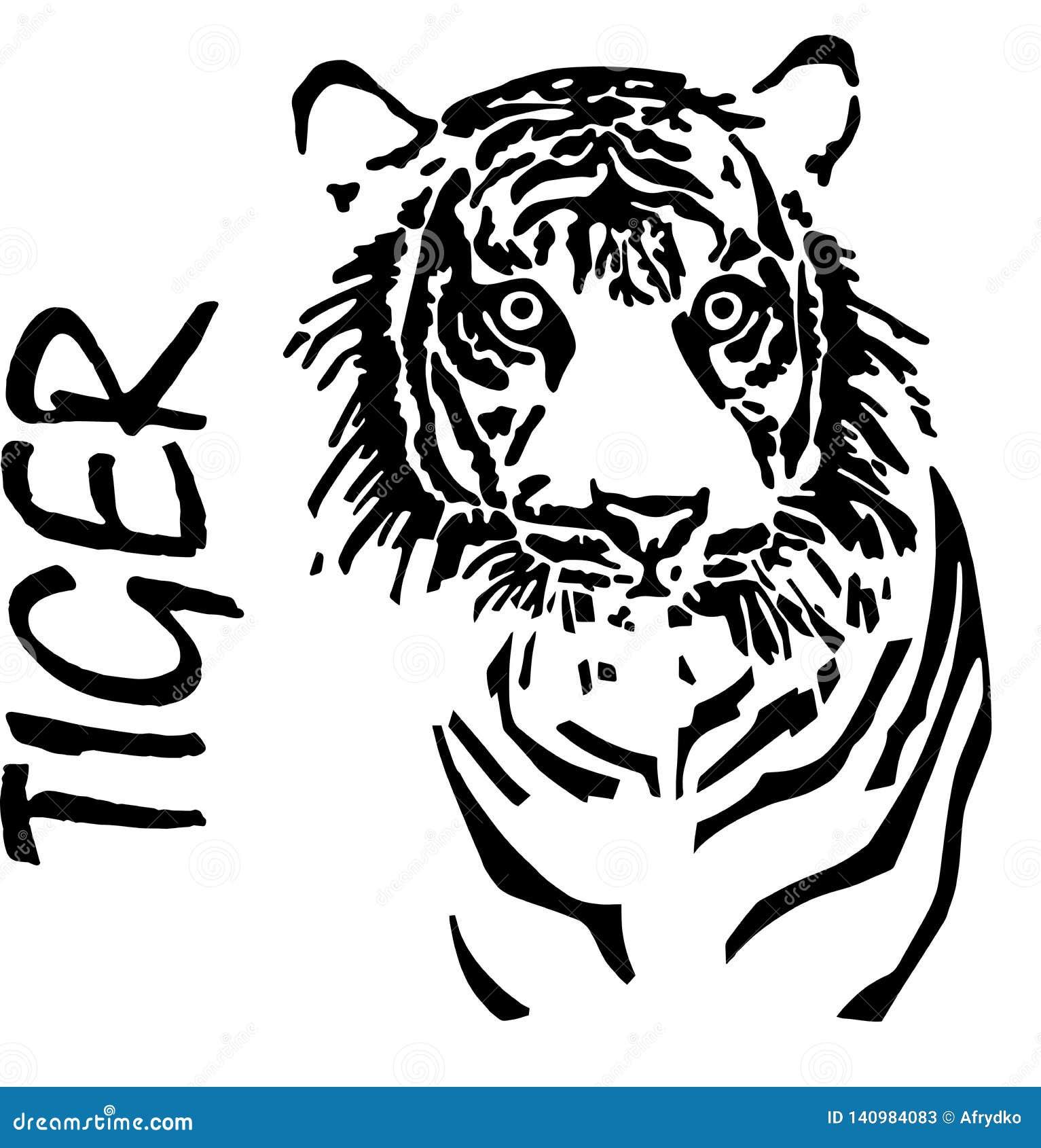 Tijger, handtekening, vector