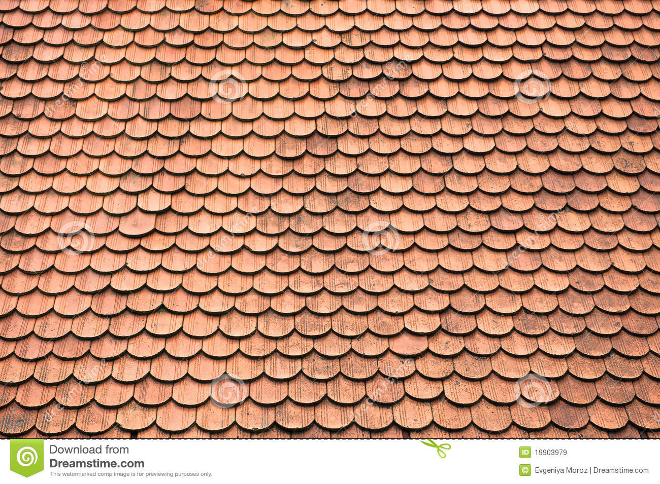 Tiles On Old Castle Roof Stock Image Image Of