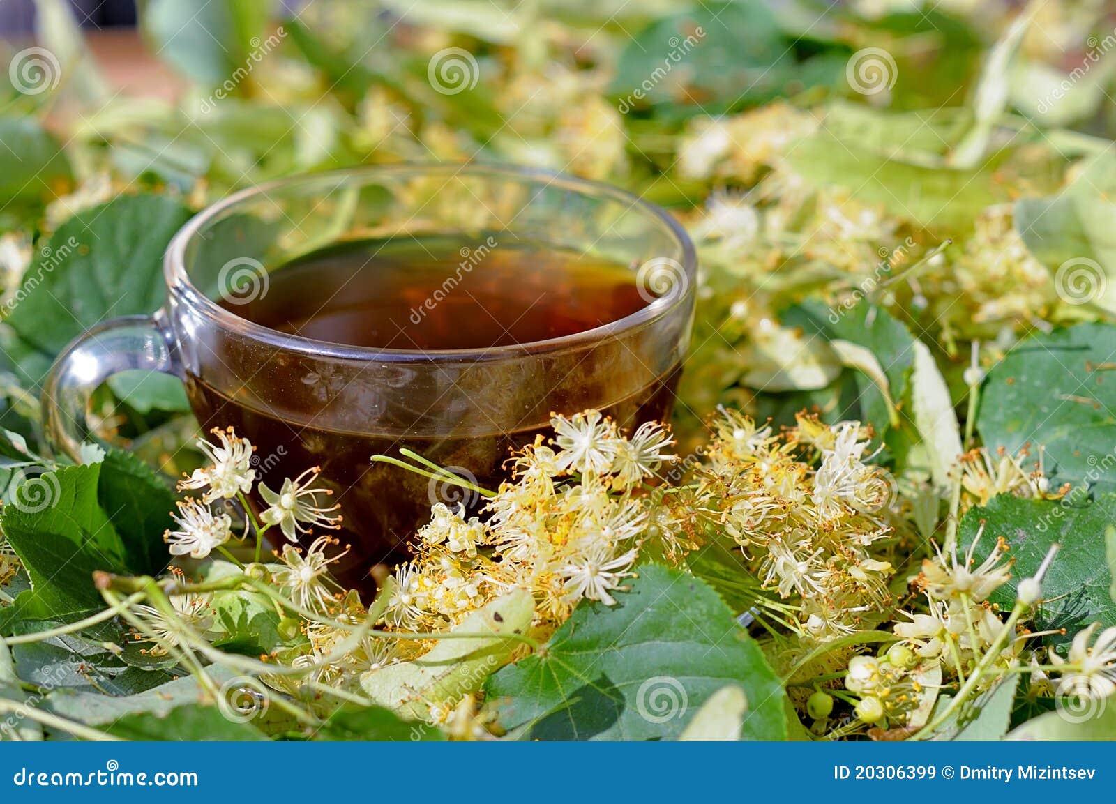 чай голубой цветок