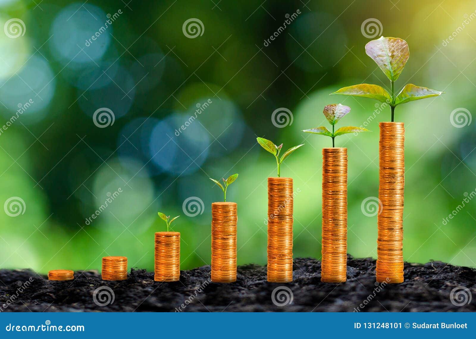 Tillväxten av guld- mynt har ett naturligt grönt bakgrundsträd