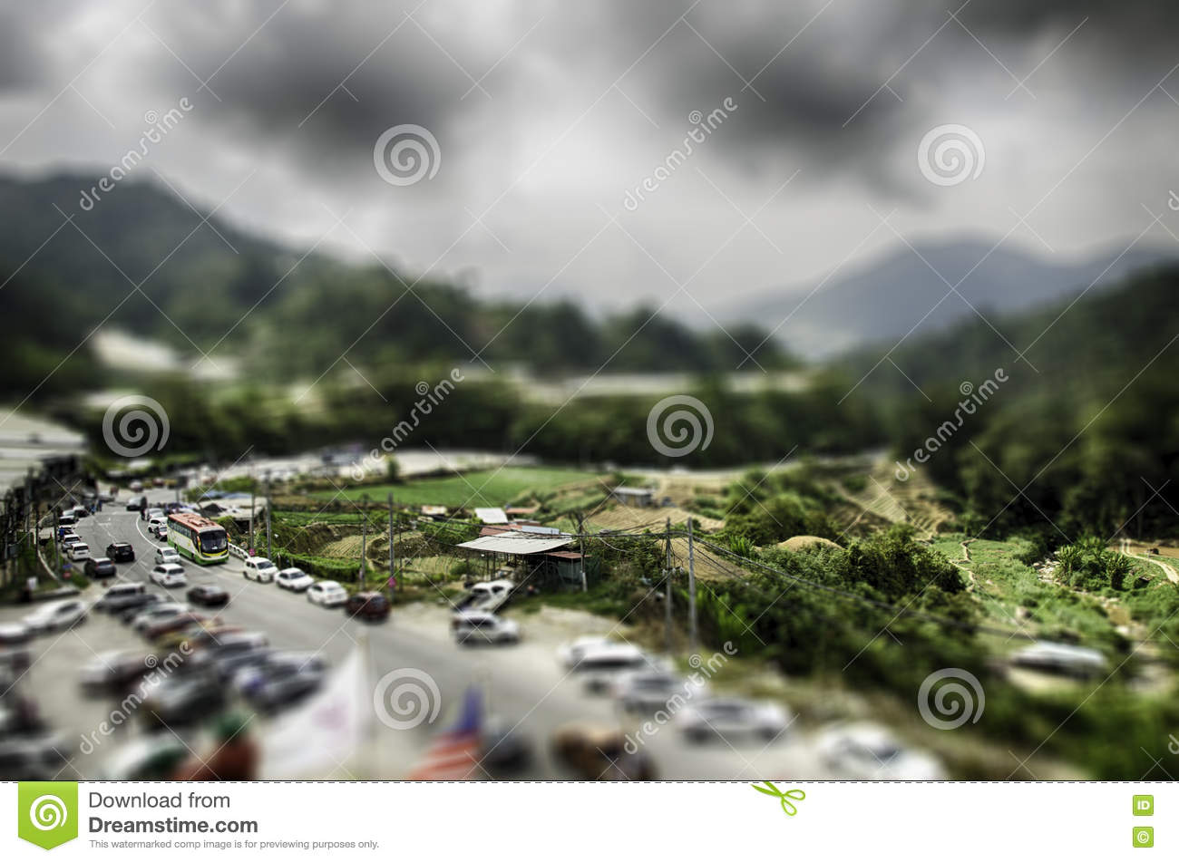 Top View Of Car Park Vector Illustration Cartoondealer