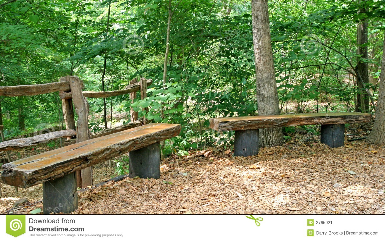 Natural wood timber benches in a forest park.