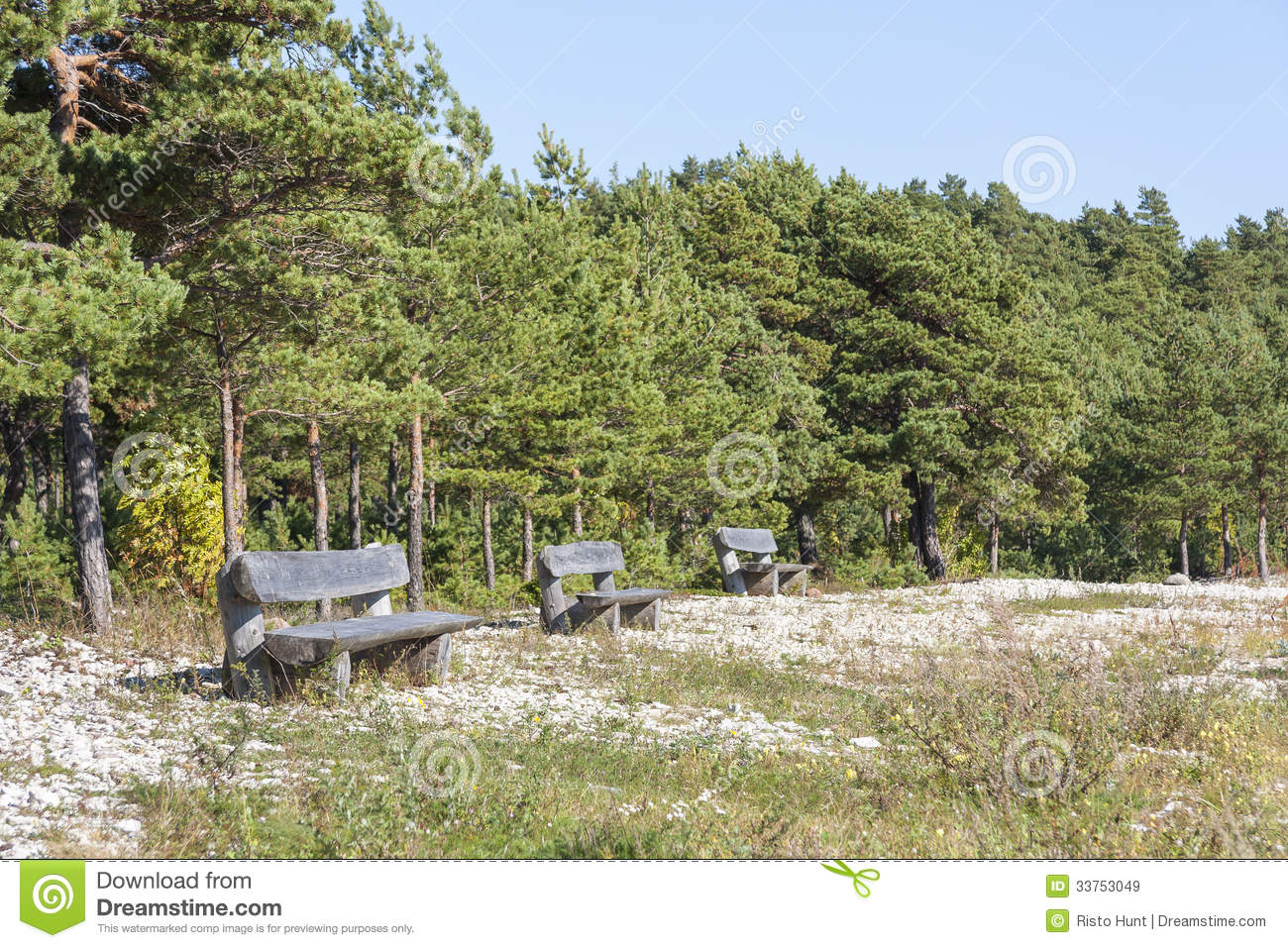 Timber seats on a field royalty free stock images image for Pine tree timber