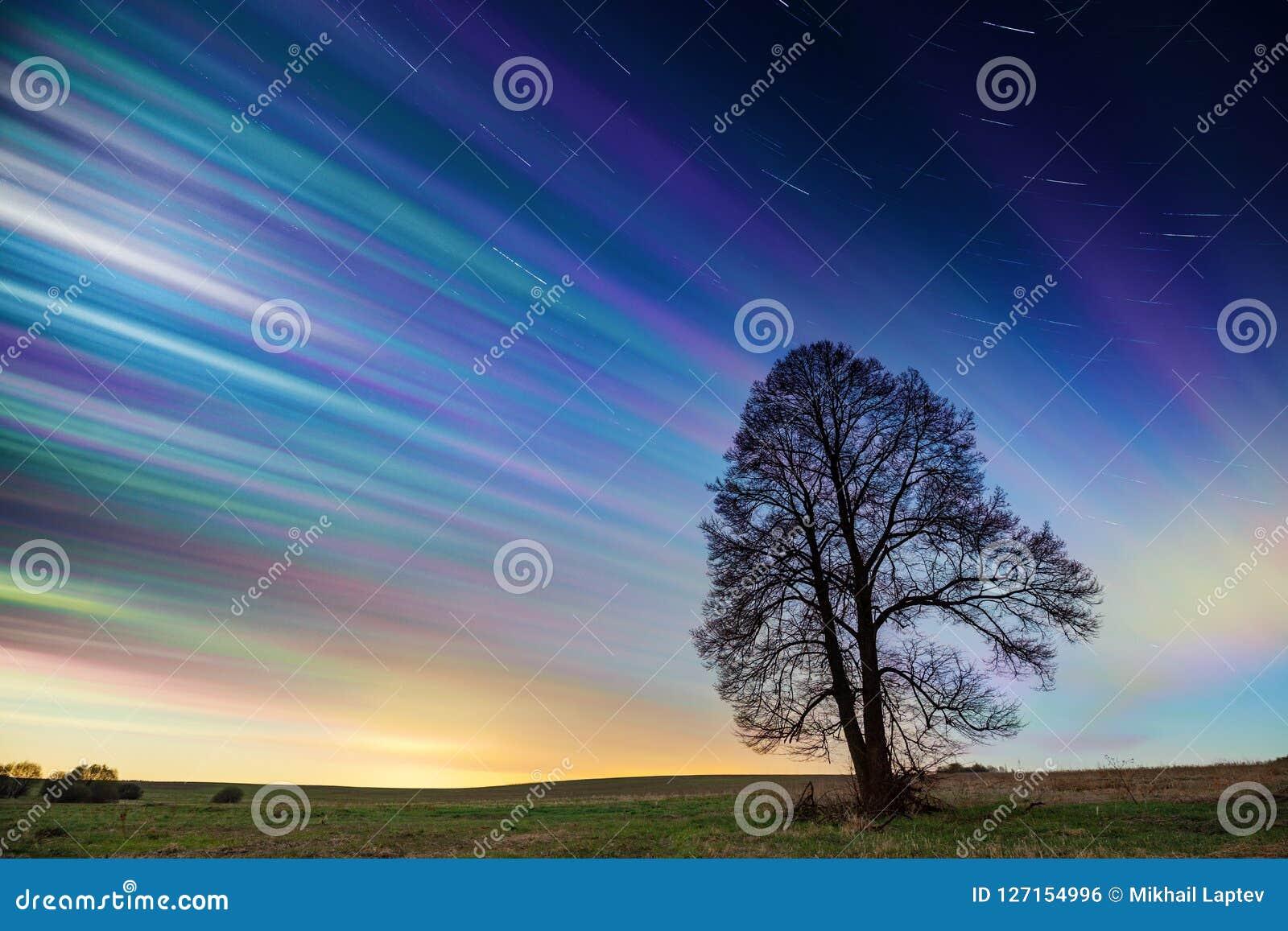 Timelapse van kleurrijke zonsonderganghemel met sterren over groen gebied