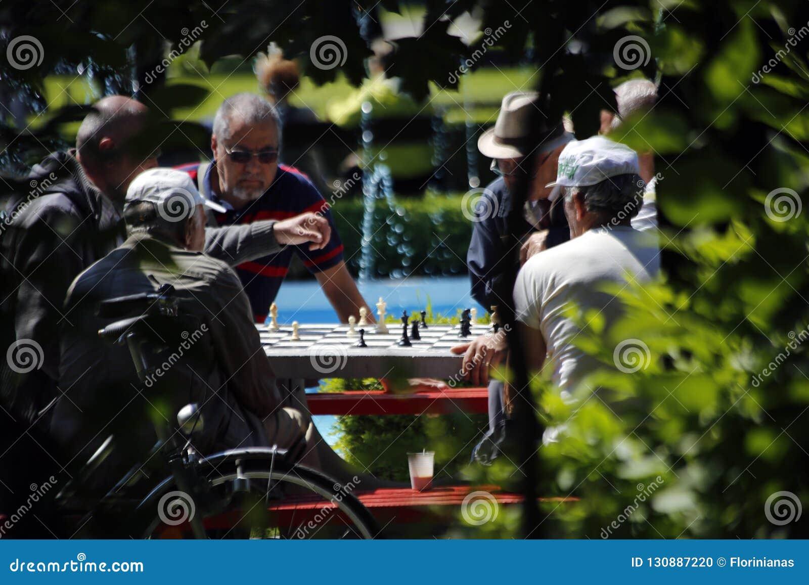 TIMISOARA, †«06 РУМЫНИИ 05 2014 группы в составе престарелые шахматы игры в парке