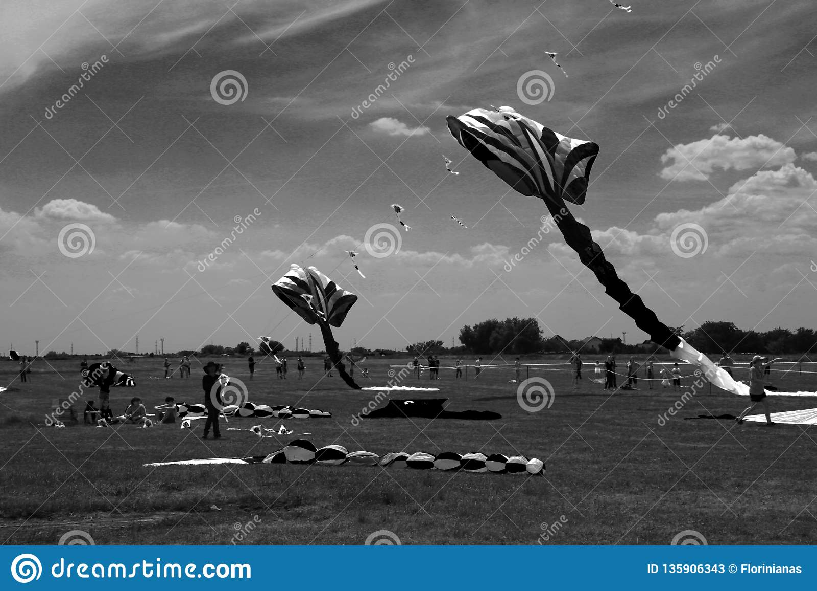 TIMISOARA, ROUMANIE 06 01 20187 cerfs-volants colorés remplissent ciel Tir noir et blanc