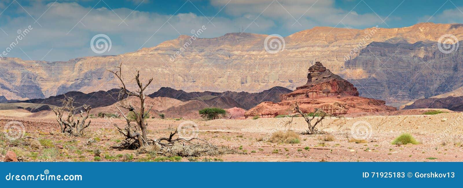 Timna парка Израиля образования геологохимическое
