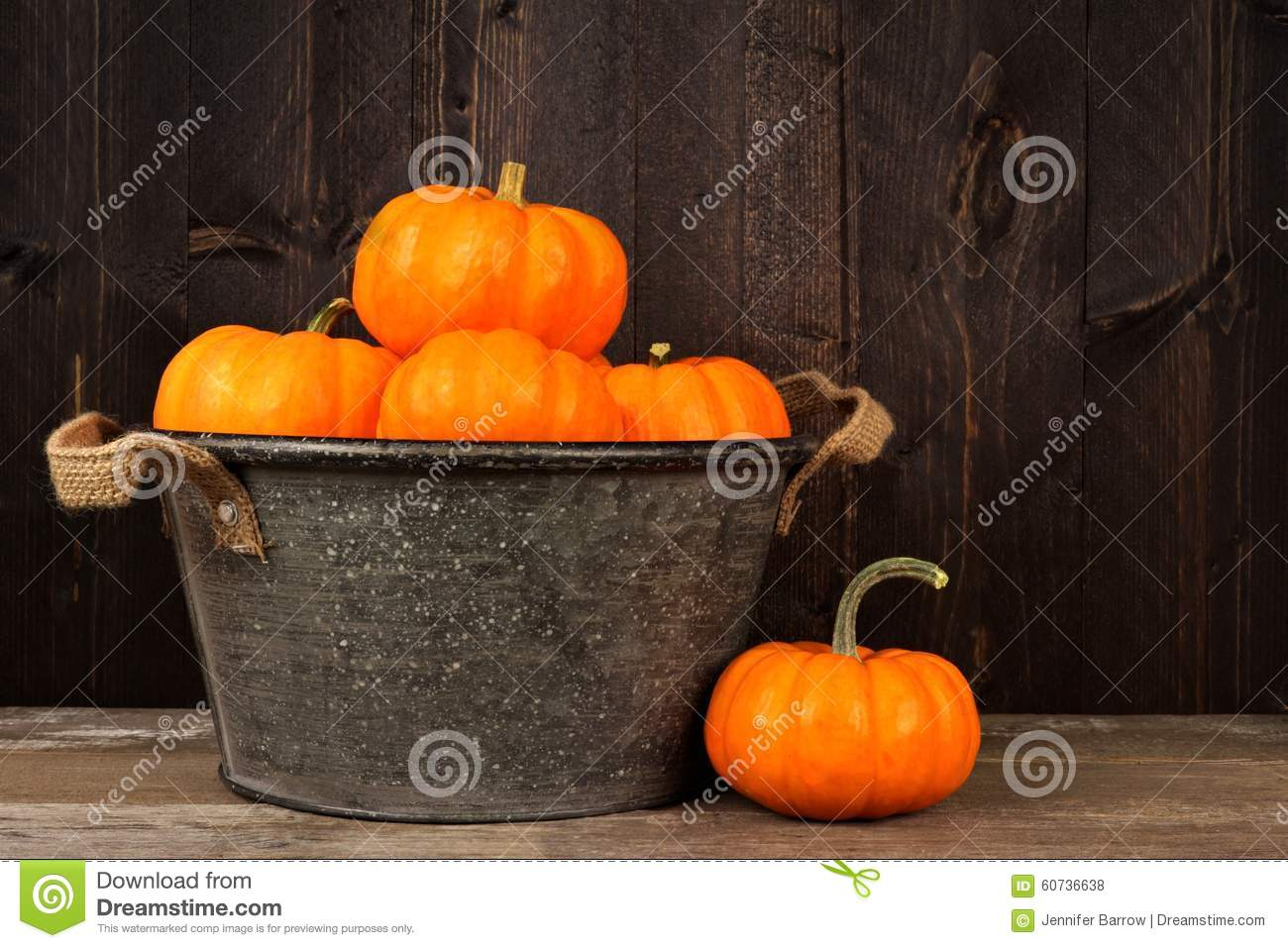 Tin harvest pail with autumn pumpkins over wood