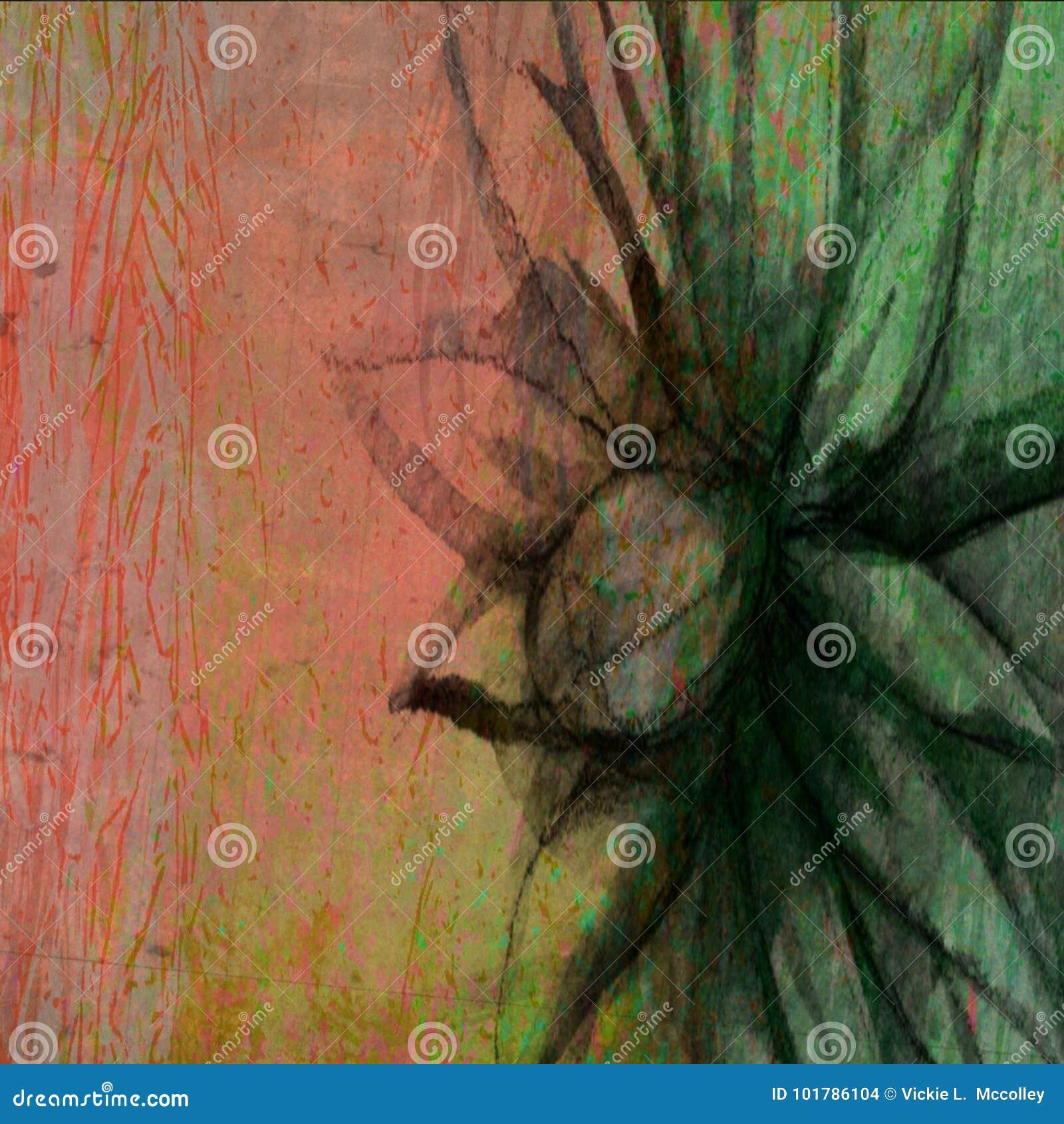 Tinta colorida de madeira Daisy Sketch Designs Backdrop floral