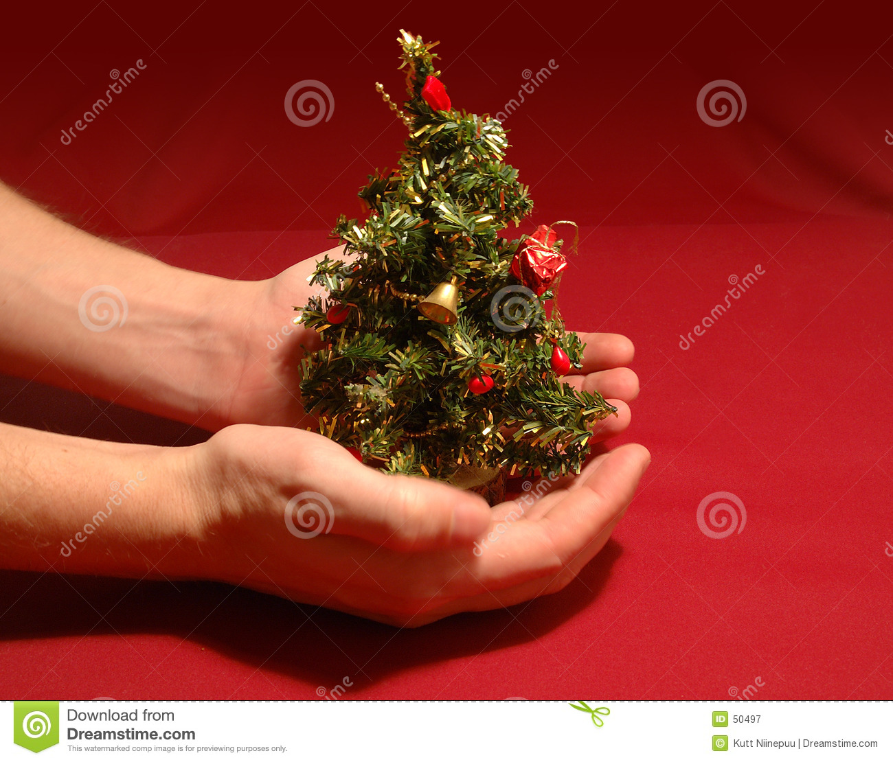 tiny christmas tree royalty free stock photography