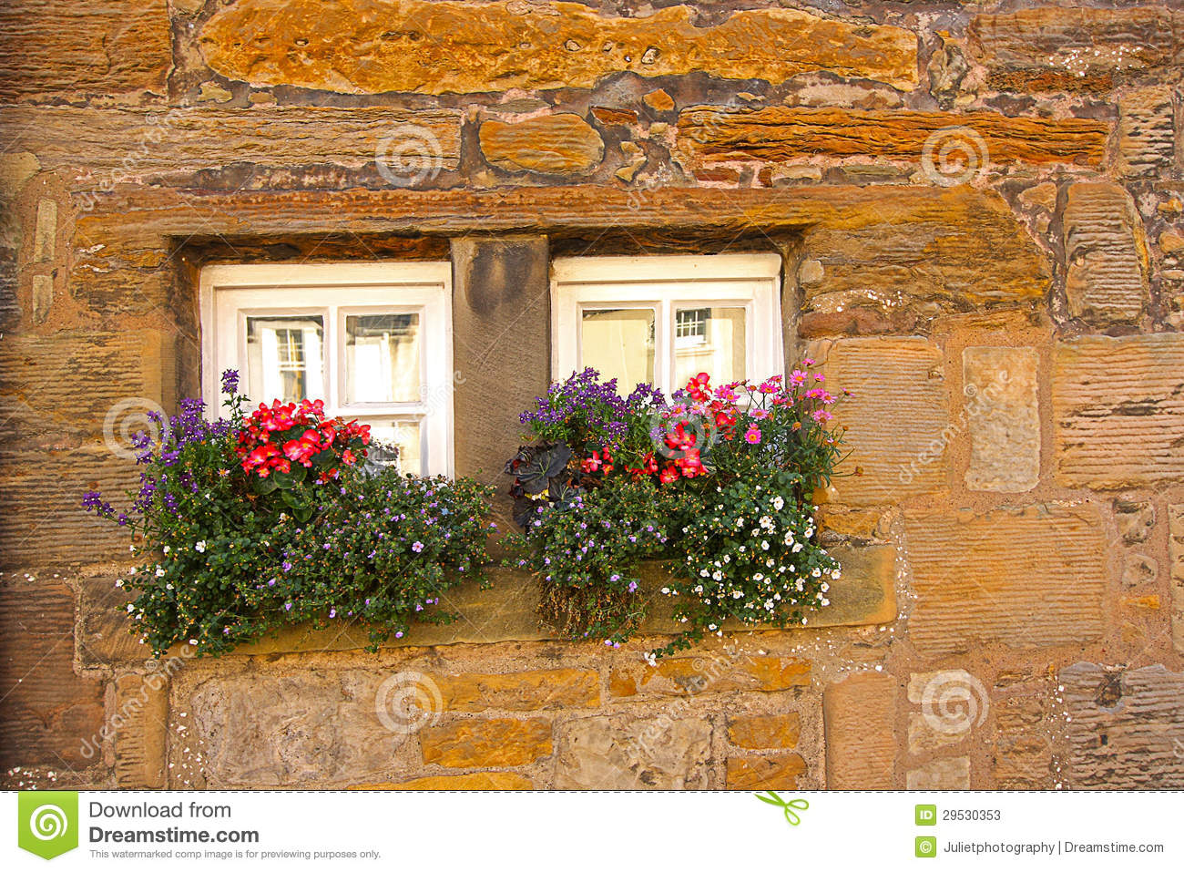 Tiny Scottish Windows With Flowers Stock Image - Image of house