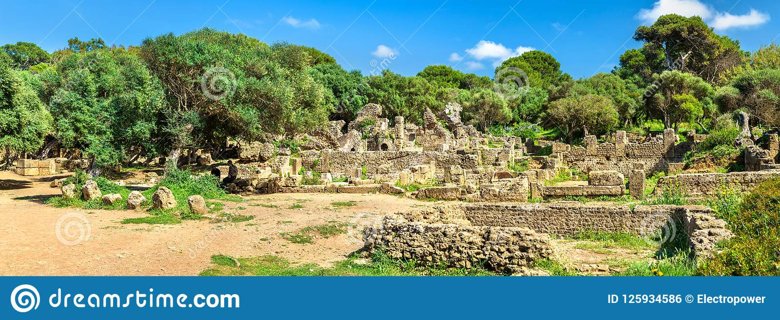 Tipasa废墟,一罗马colonia在阿尔及利亚,北非