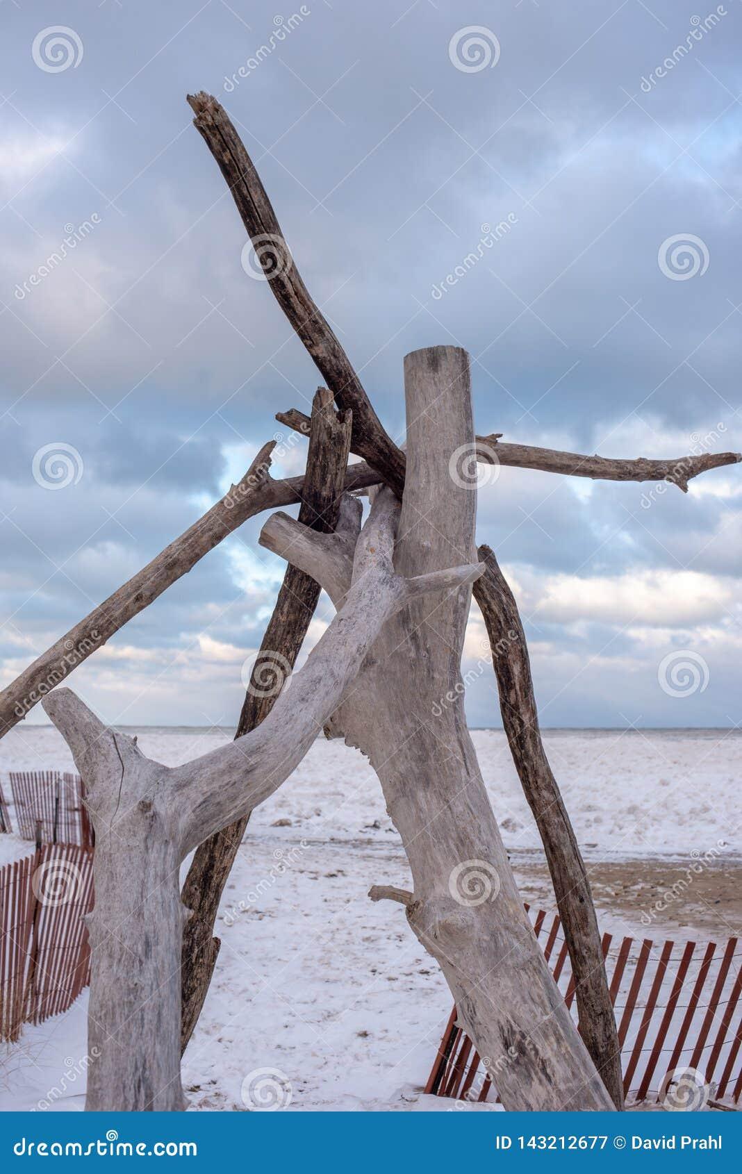 Tipi de bois de flottage le long de plage congelée du lac Michigan Chicago