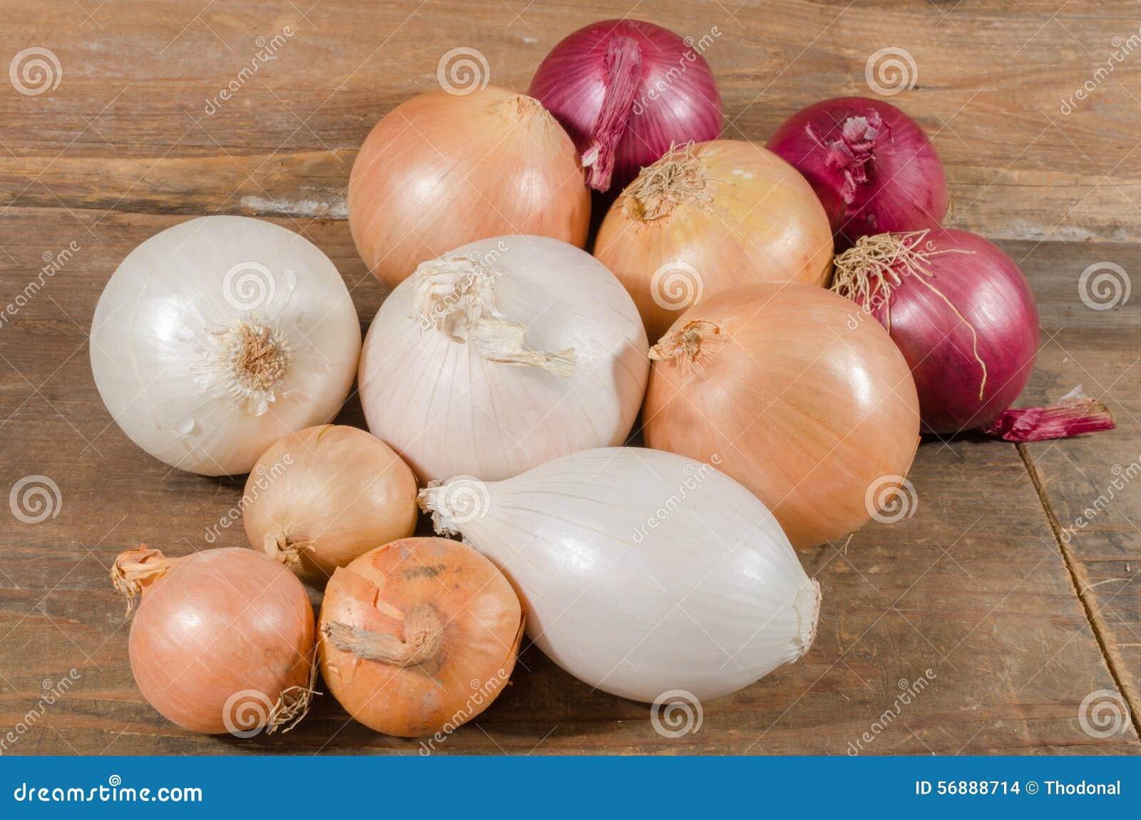 Tipi differenti di cipolle