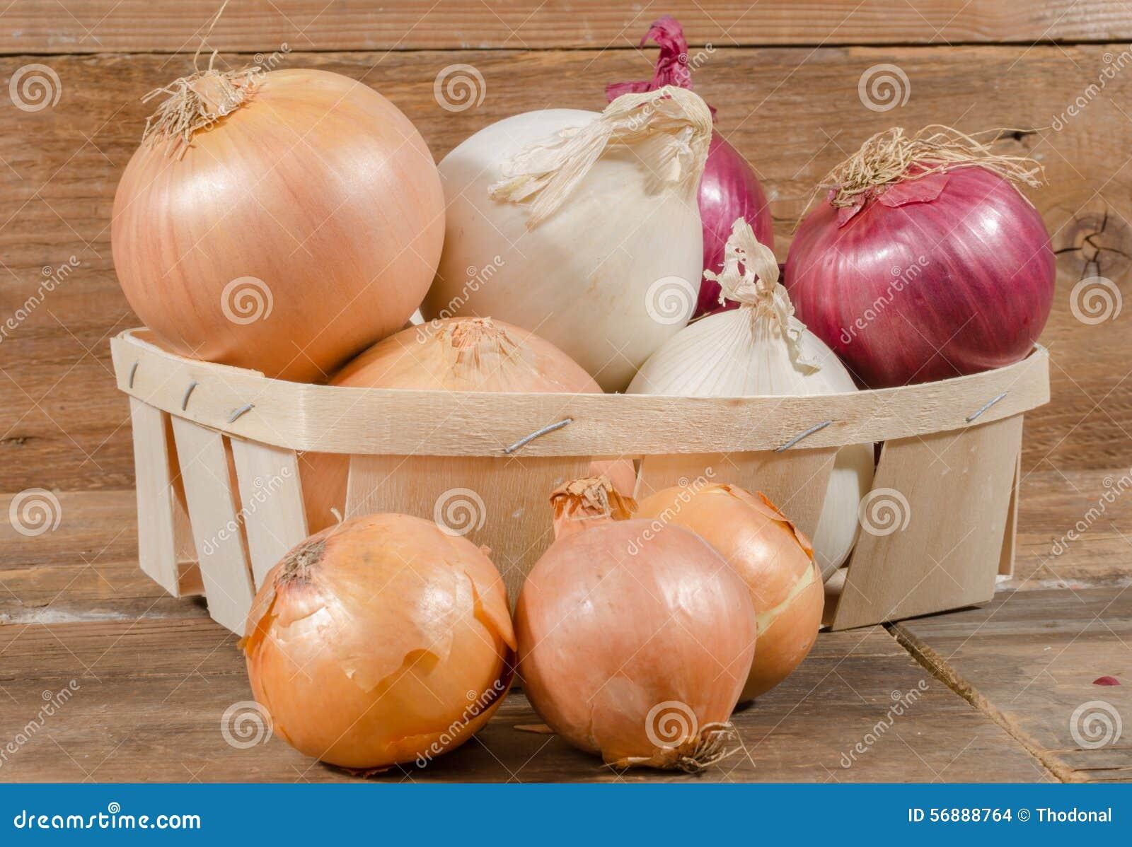 Tipi differenti di cipolle in un canestro