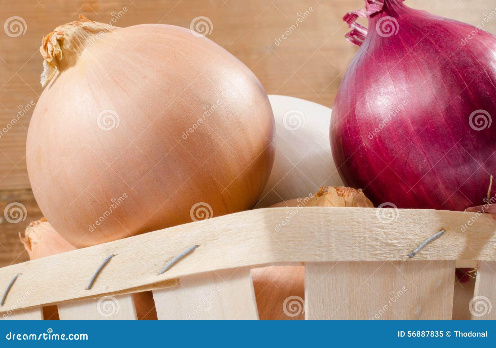 Tipi differenti di primi piani delle cipolle