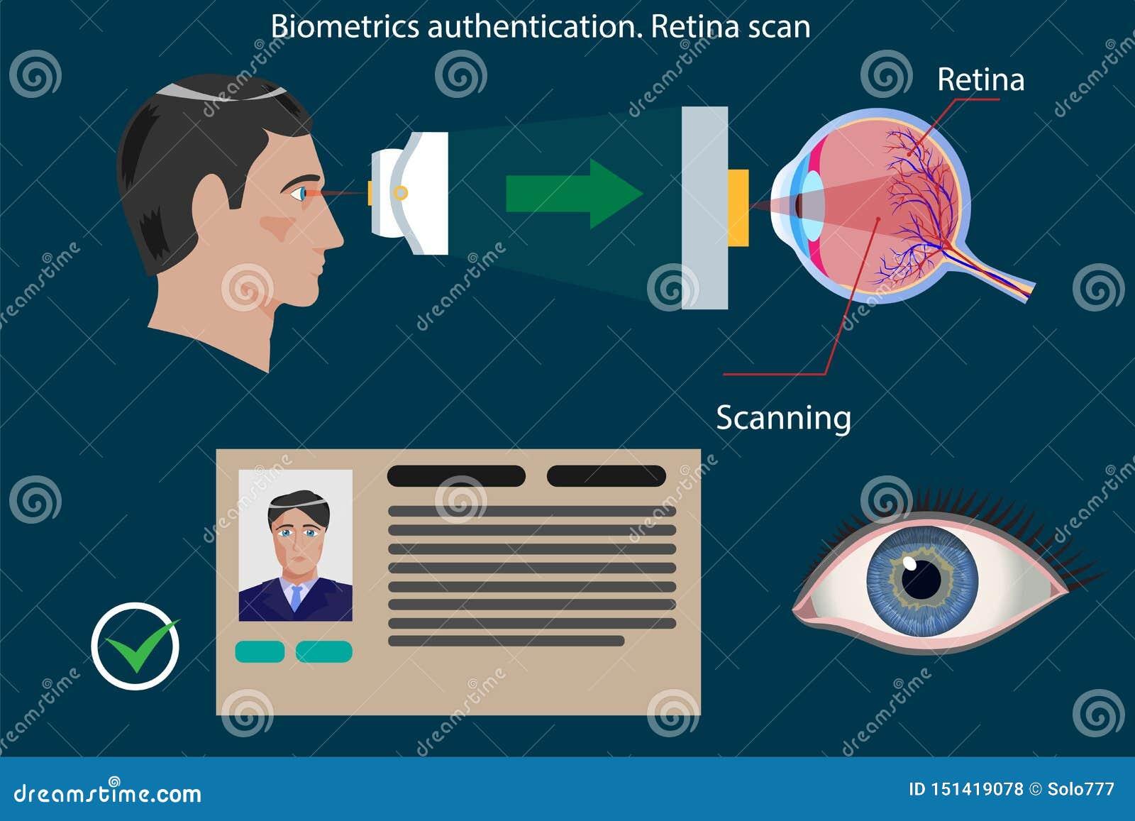 Tipo de la exploración de la retina de autentificación biométrica - ejemplo del vector del concepto