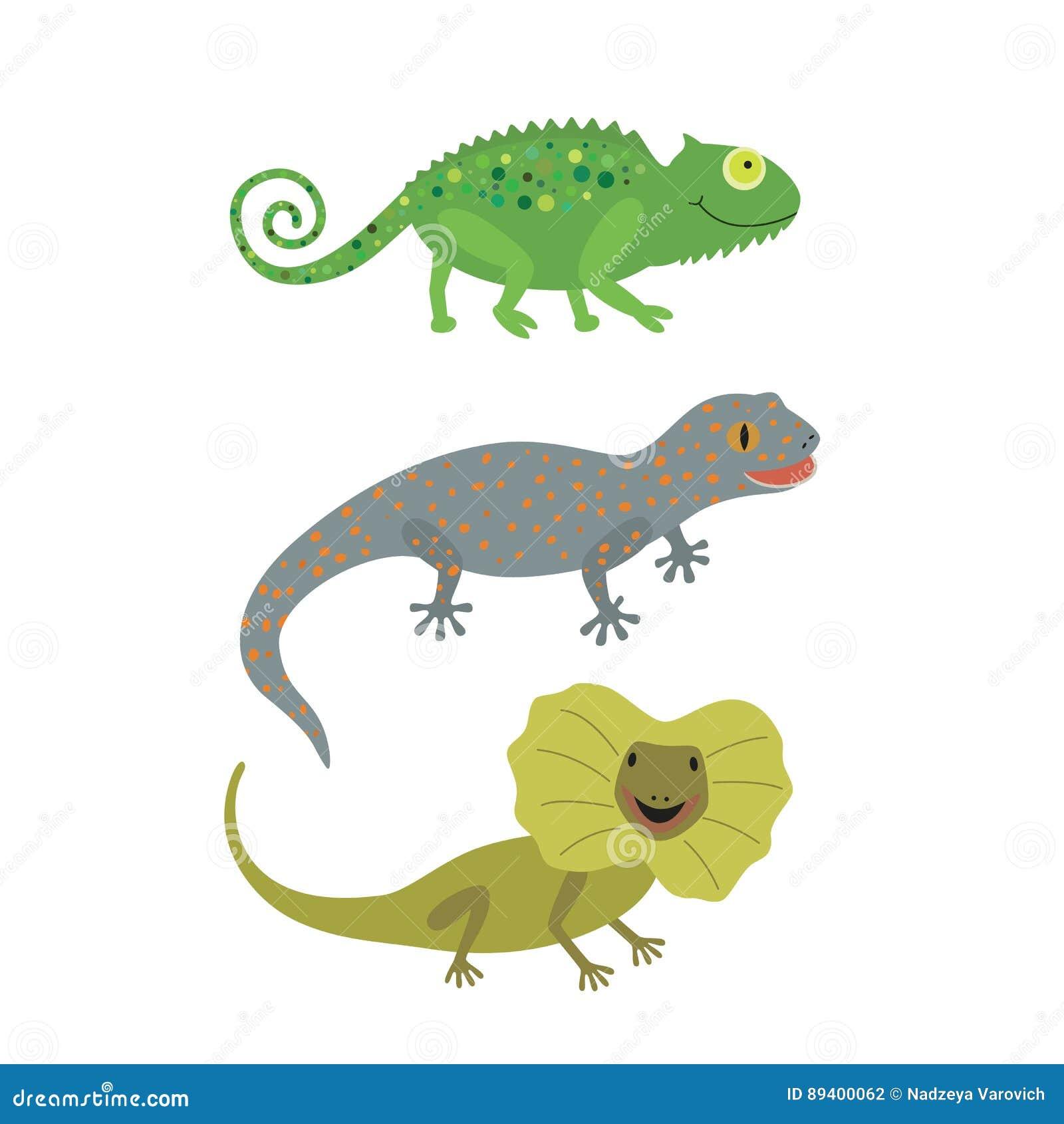 Tipo diferente dos ícones dos lagartos ajustados