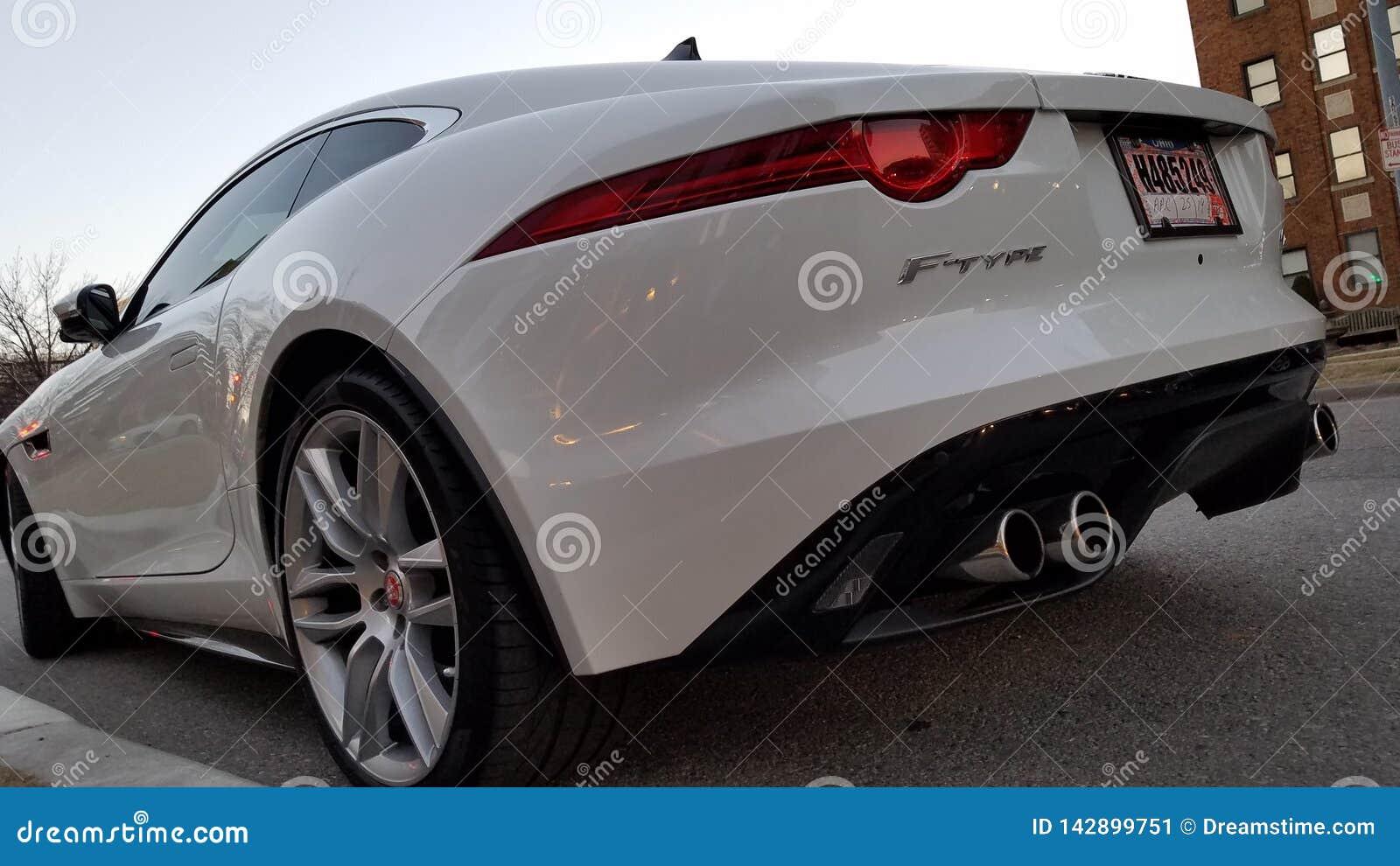TIPO parte posteriore bianca di Jaguar F