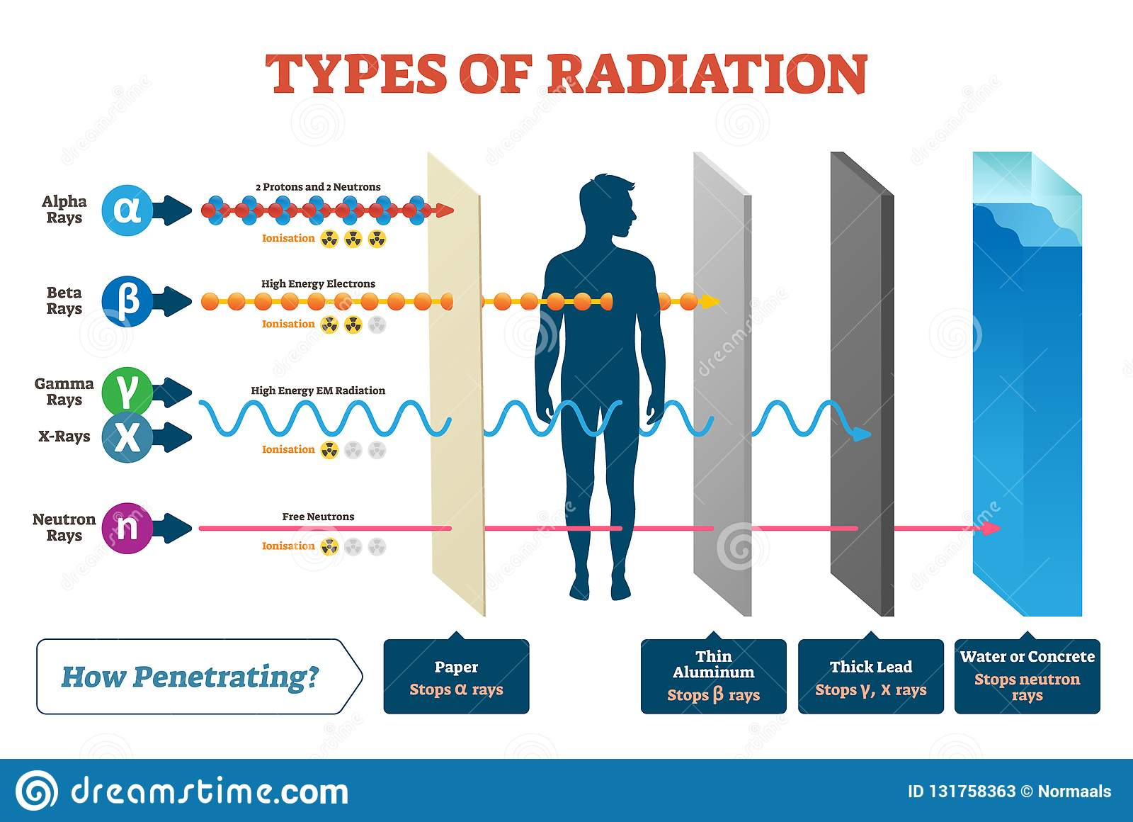 Tipos de diagrama da ilustração do vetor da radiação e de esquema etiquetado do exemplo