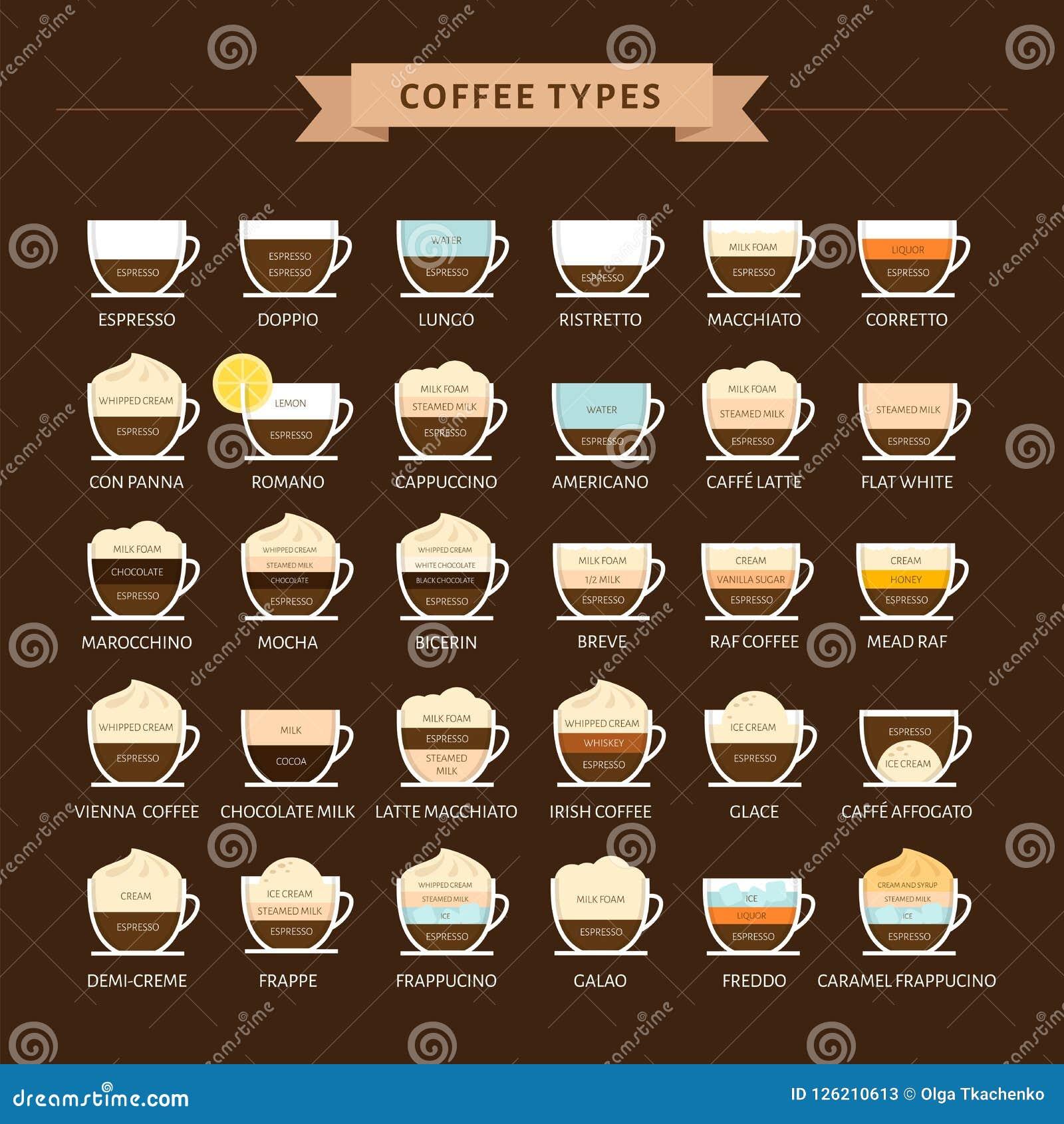 Tipos de ejemplo del vector del café Infographic de los tipos del café