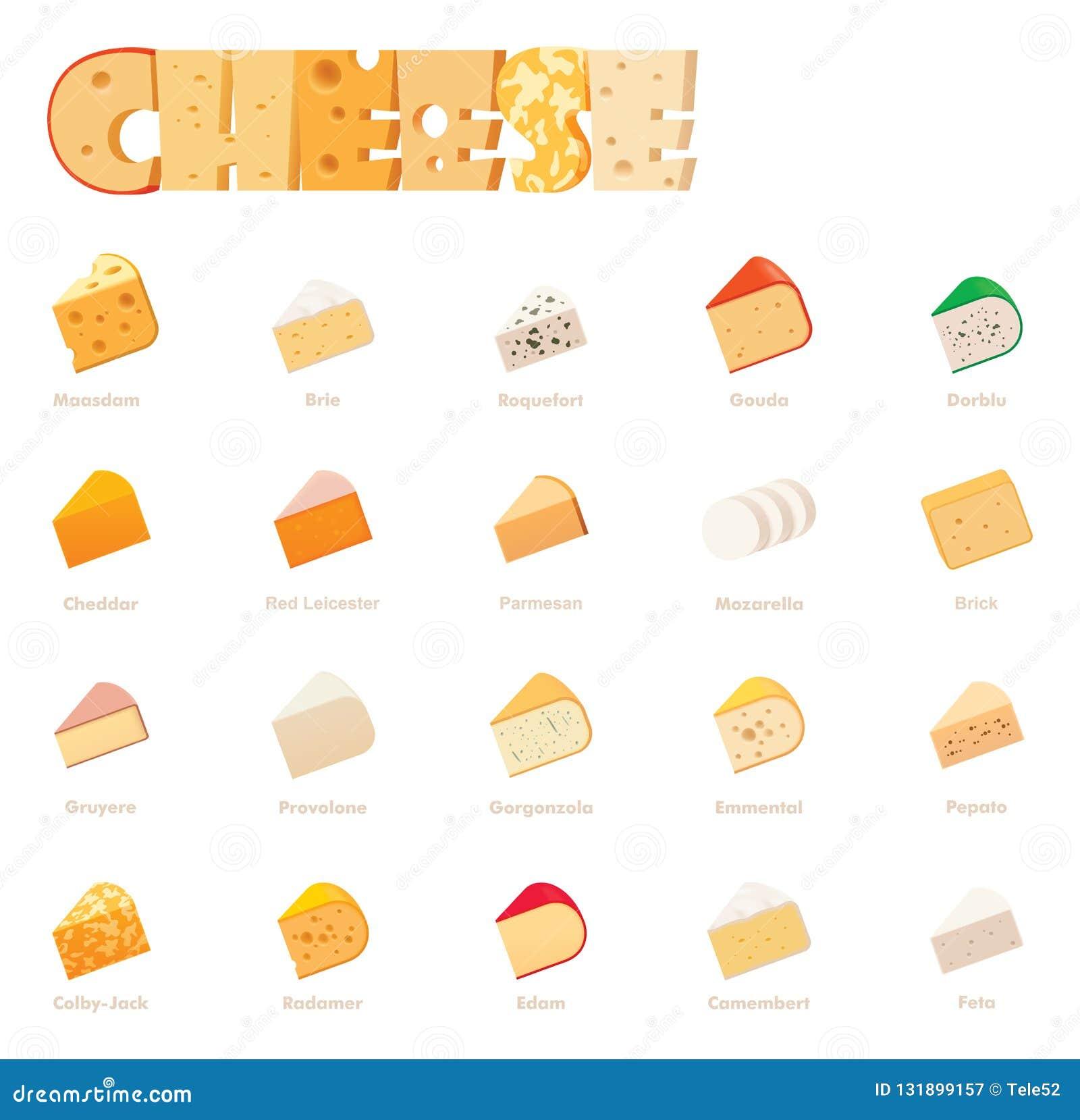 Tipos grupo do queijo do vetor do ícone