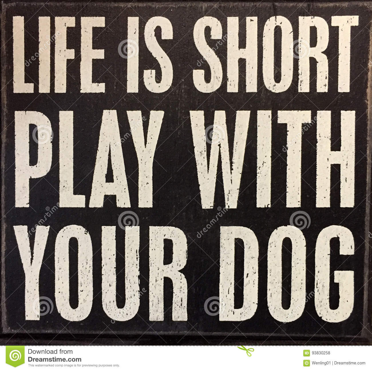 Tips about life and dog