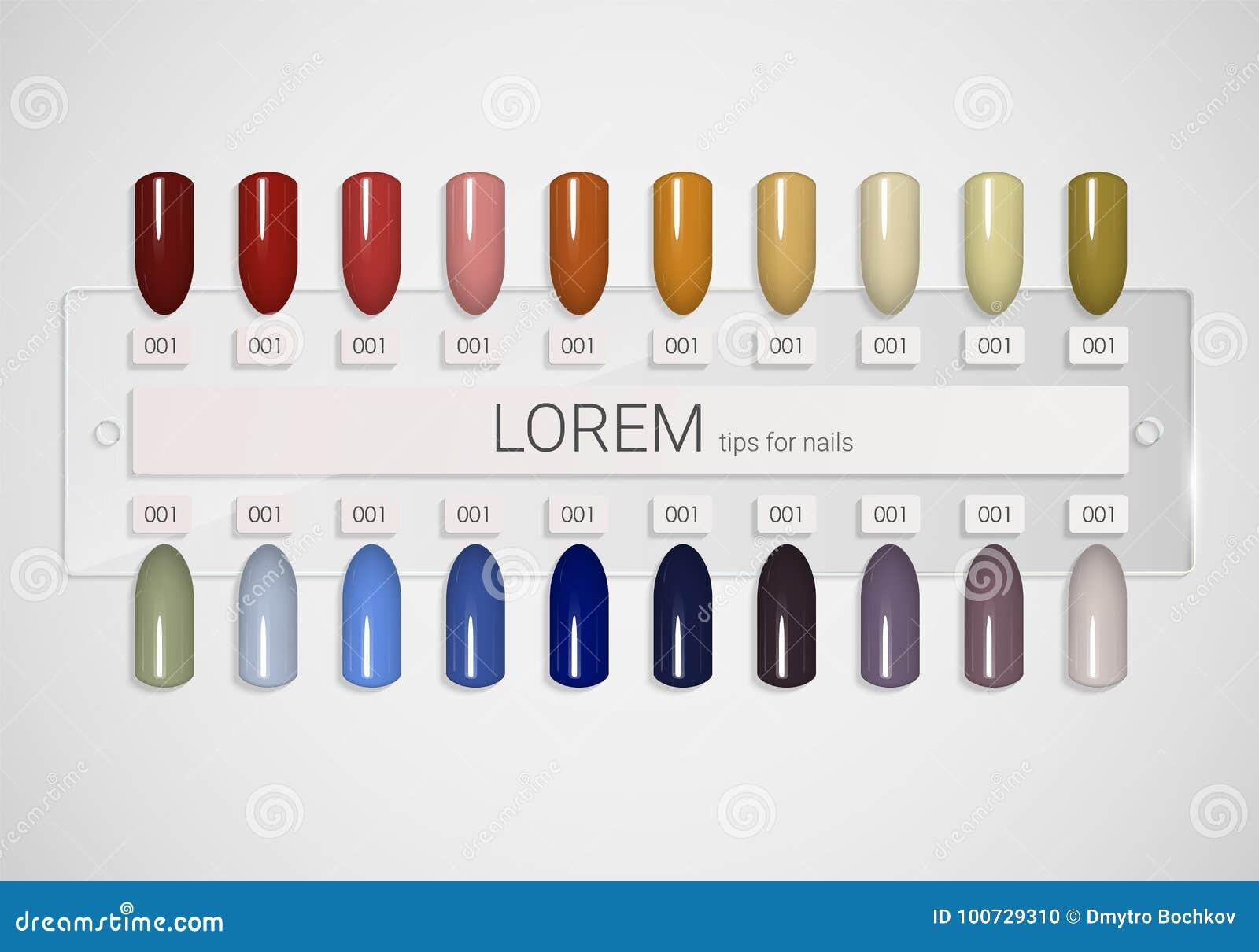 Tips. Set Of False Nails For Manicure. Varnish Color Palette For ...