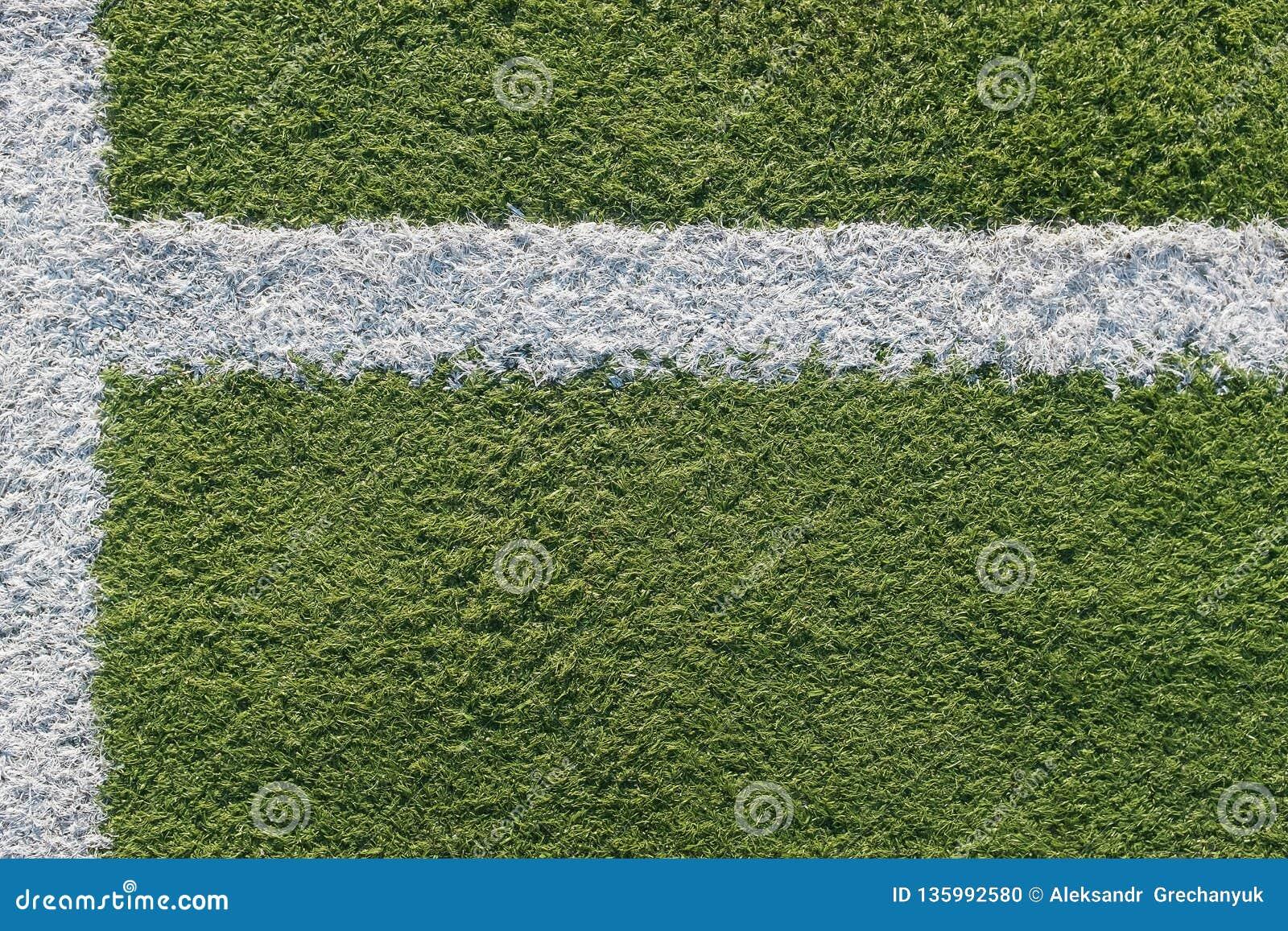 Tira branca no campo para o futebol Textura verde de um campo do futebol, do voleibol e do basquetebol