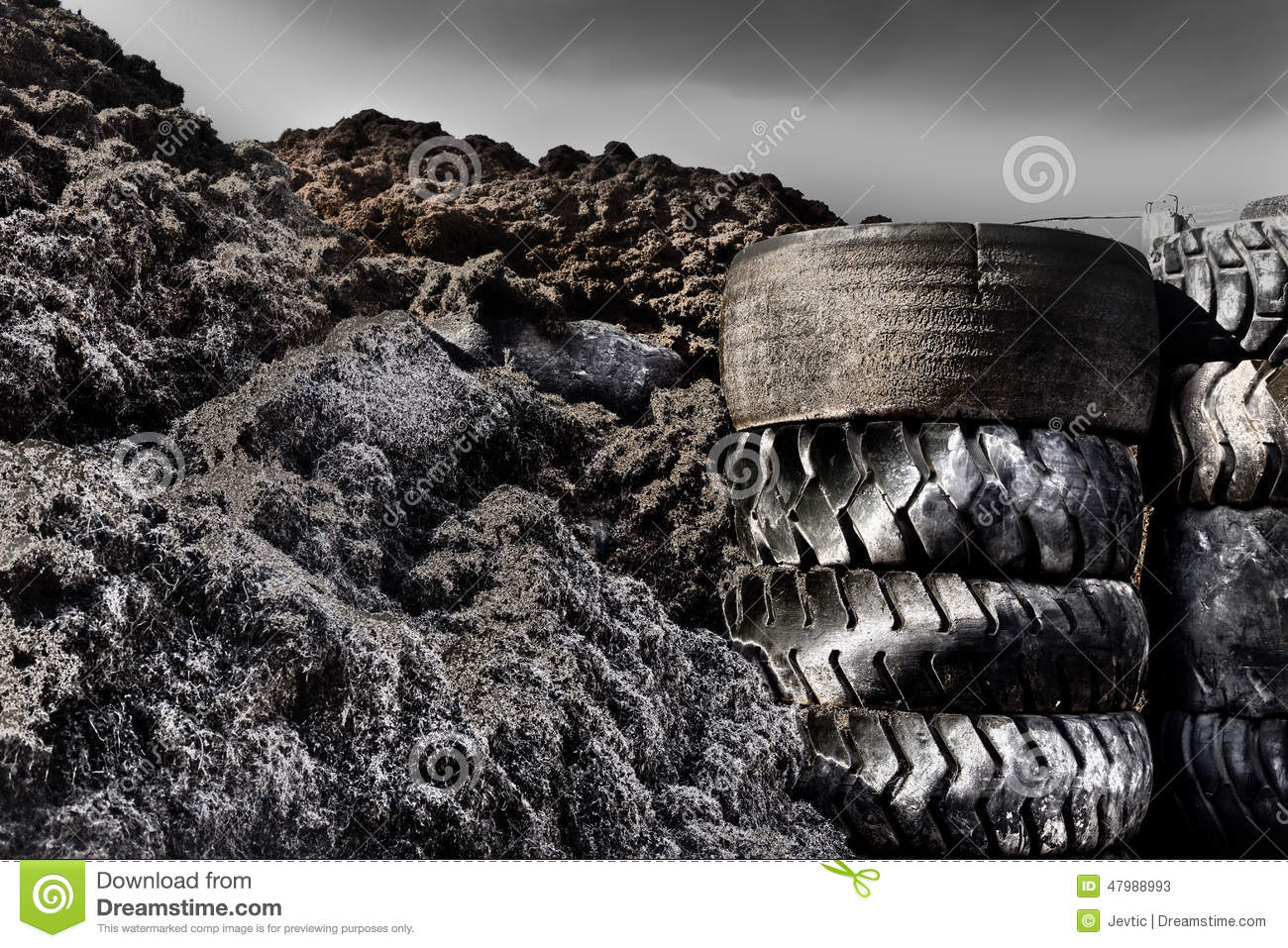 tire recycling industry Sc's growing tire manufacturing industry generate off-spec production tires for recycling in addition to scrap tires generated by retailers, fleets and residents south carolina reaps the benefit by recycling these tires and manages ongoing concerns such as scrap tire piles.