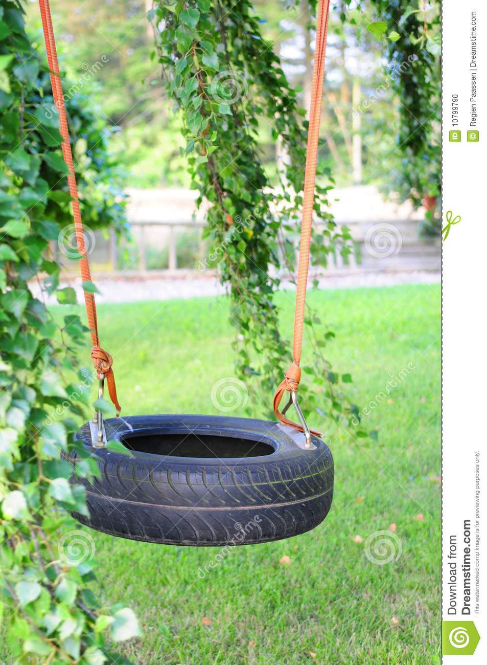 Tire Swing Stock Photo Image Of Youth Young High Sunny 10799790