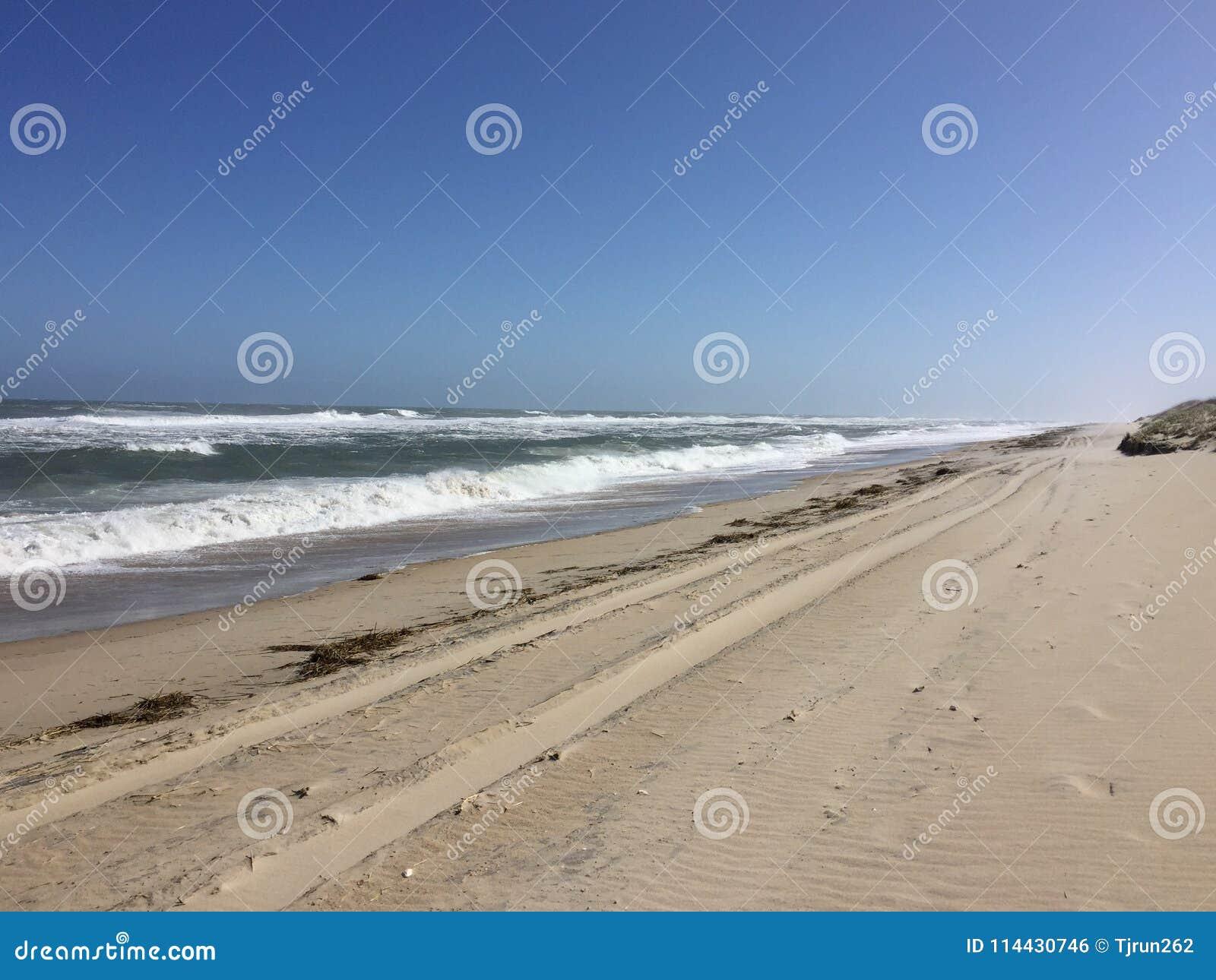 Tire tracks on a deserted beach