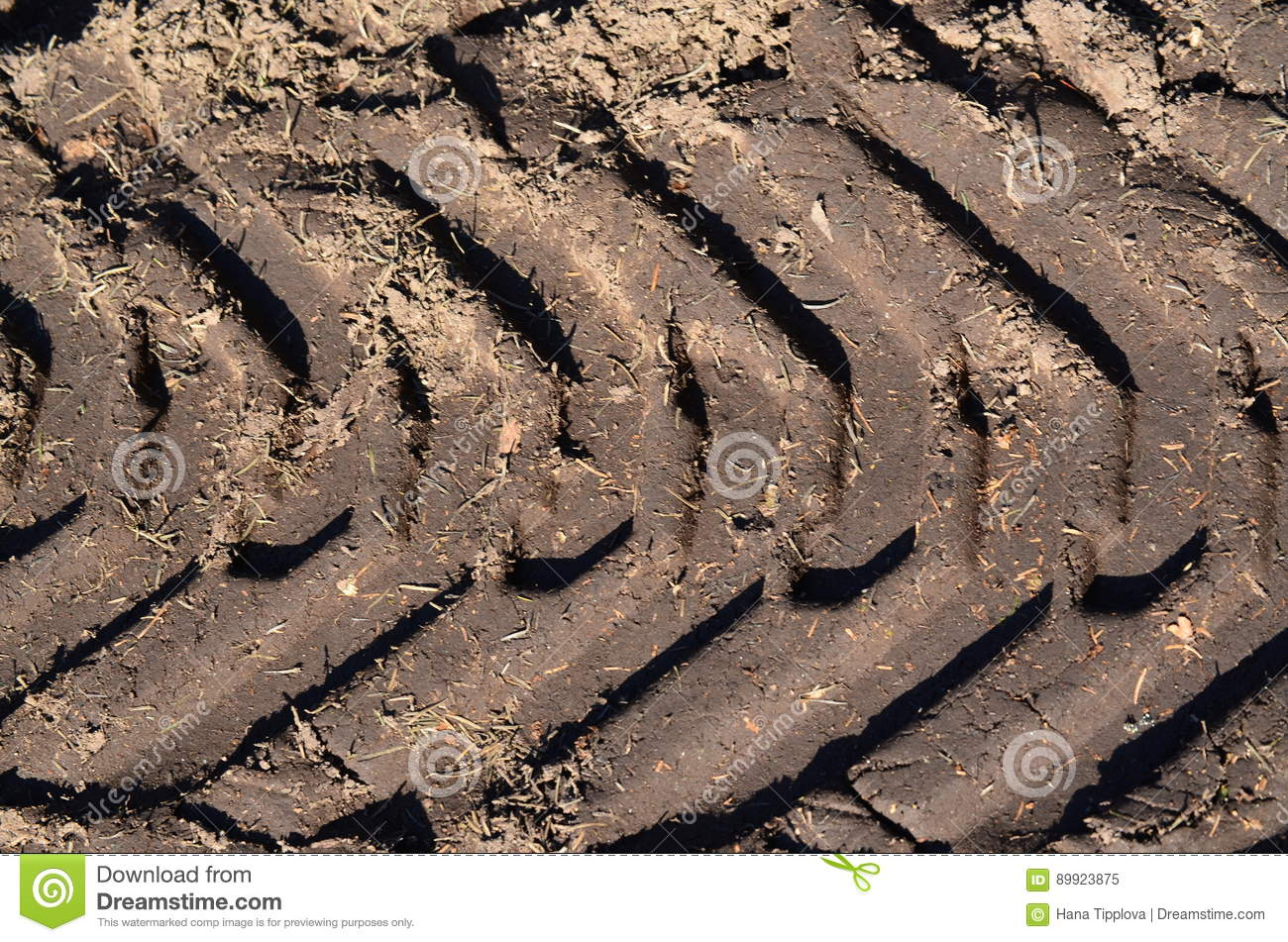 Tire tracks in the dirt