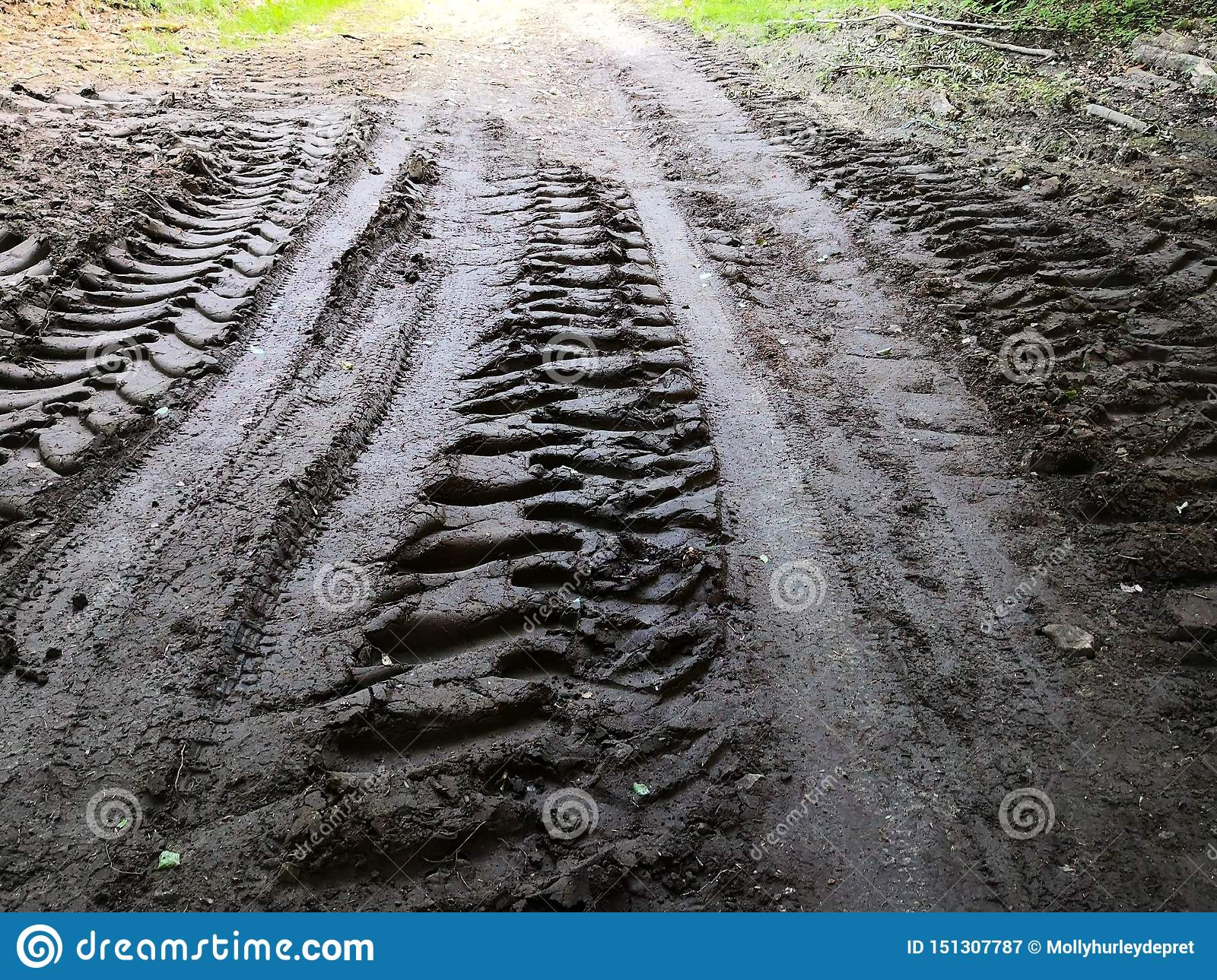 Tire tracks in mud