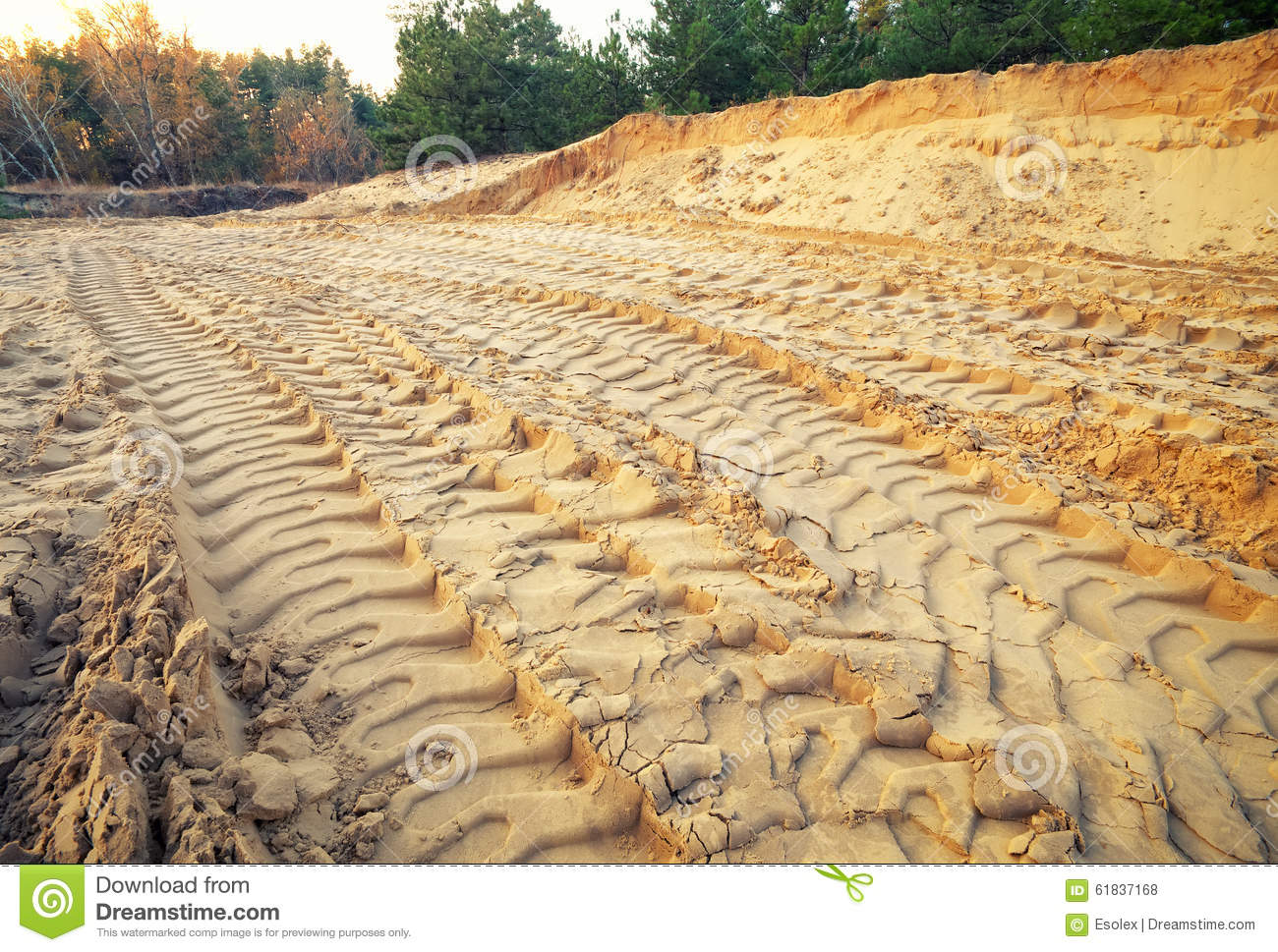 Tire tracks on the sand.