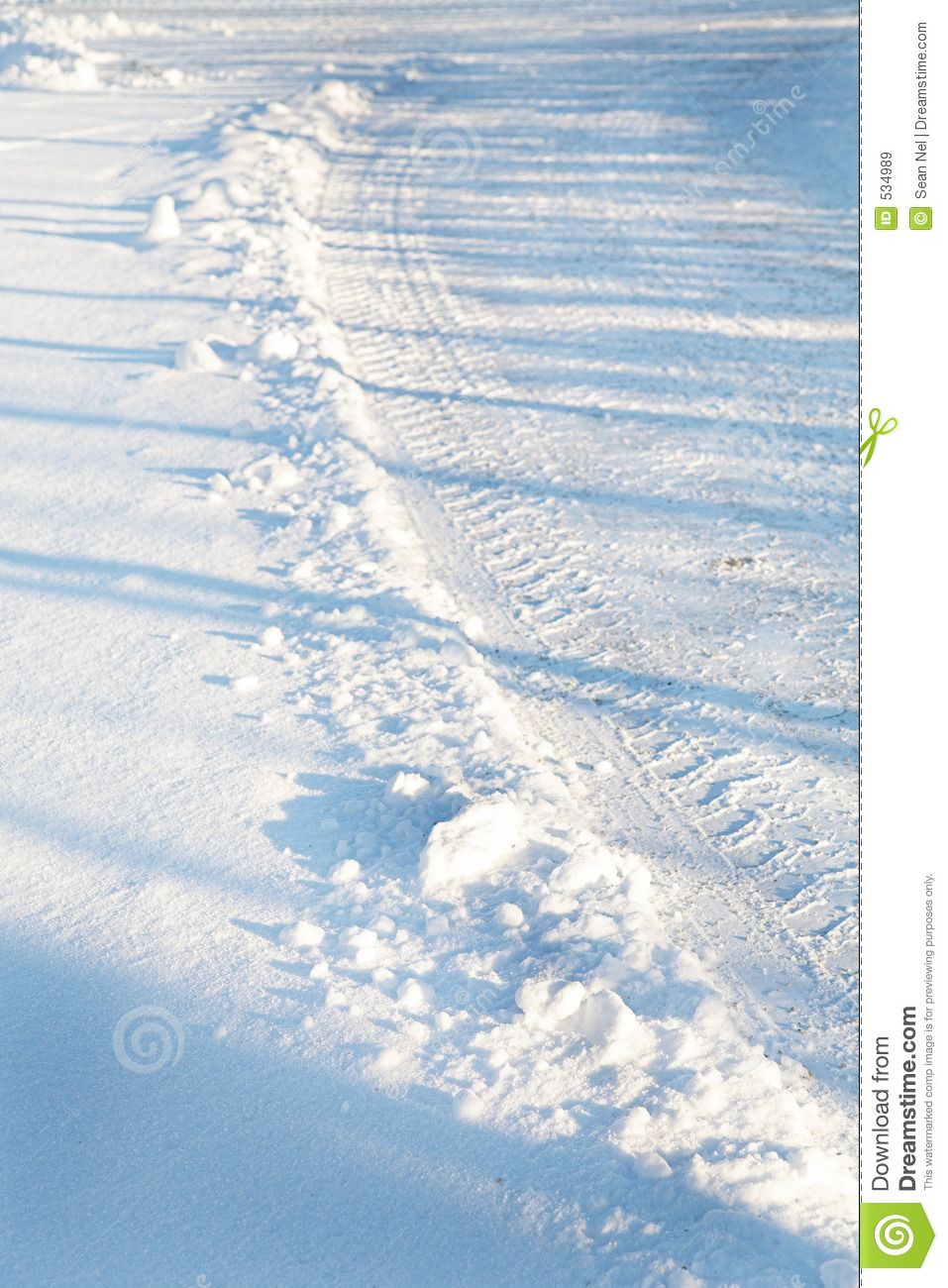 Tires Tracks in the Snow